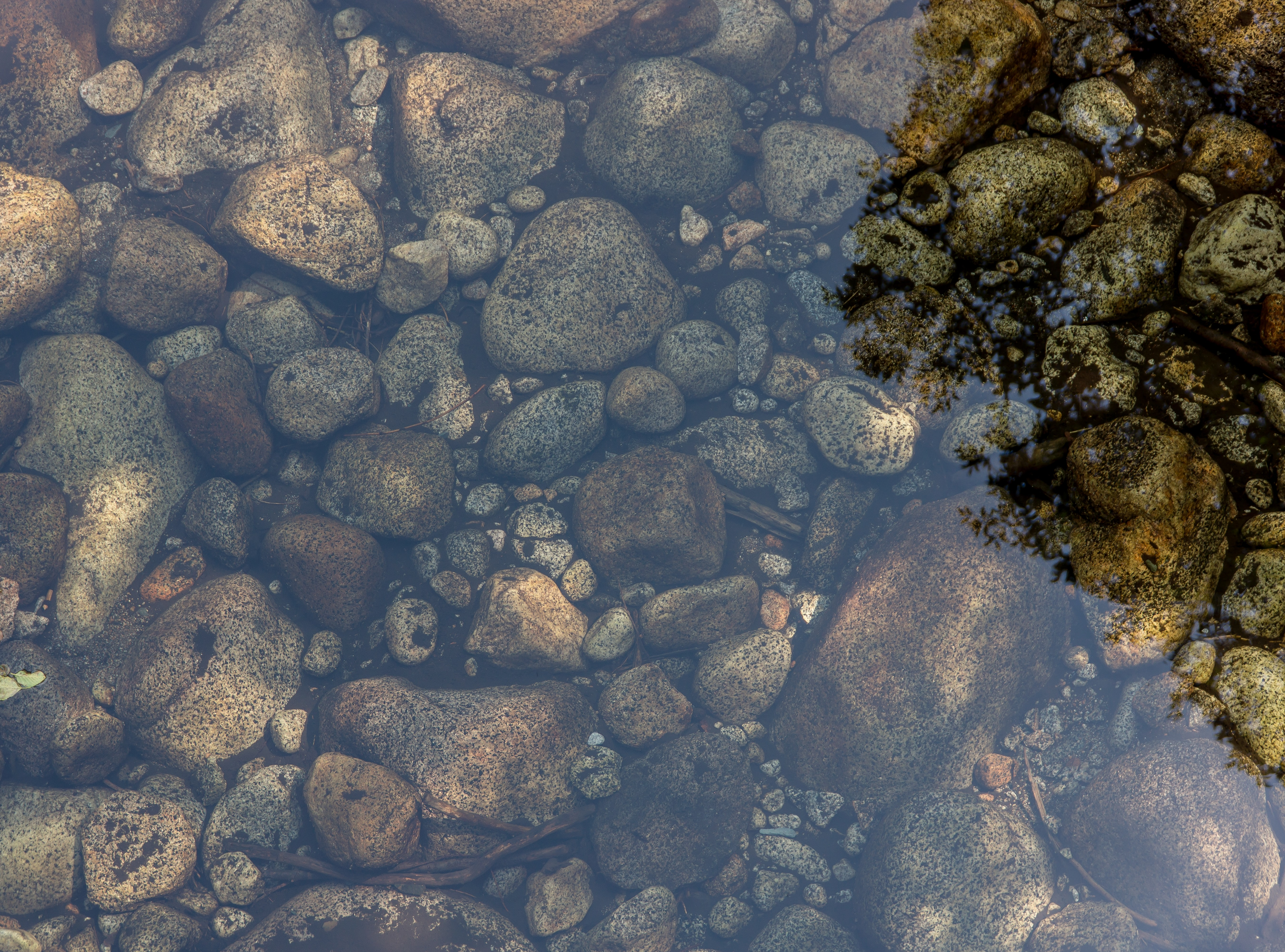 Round stones under water in Yosemite