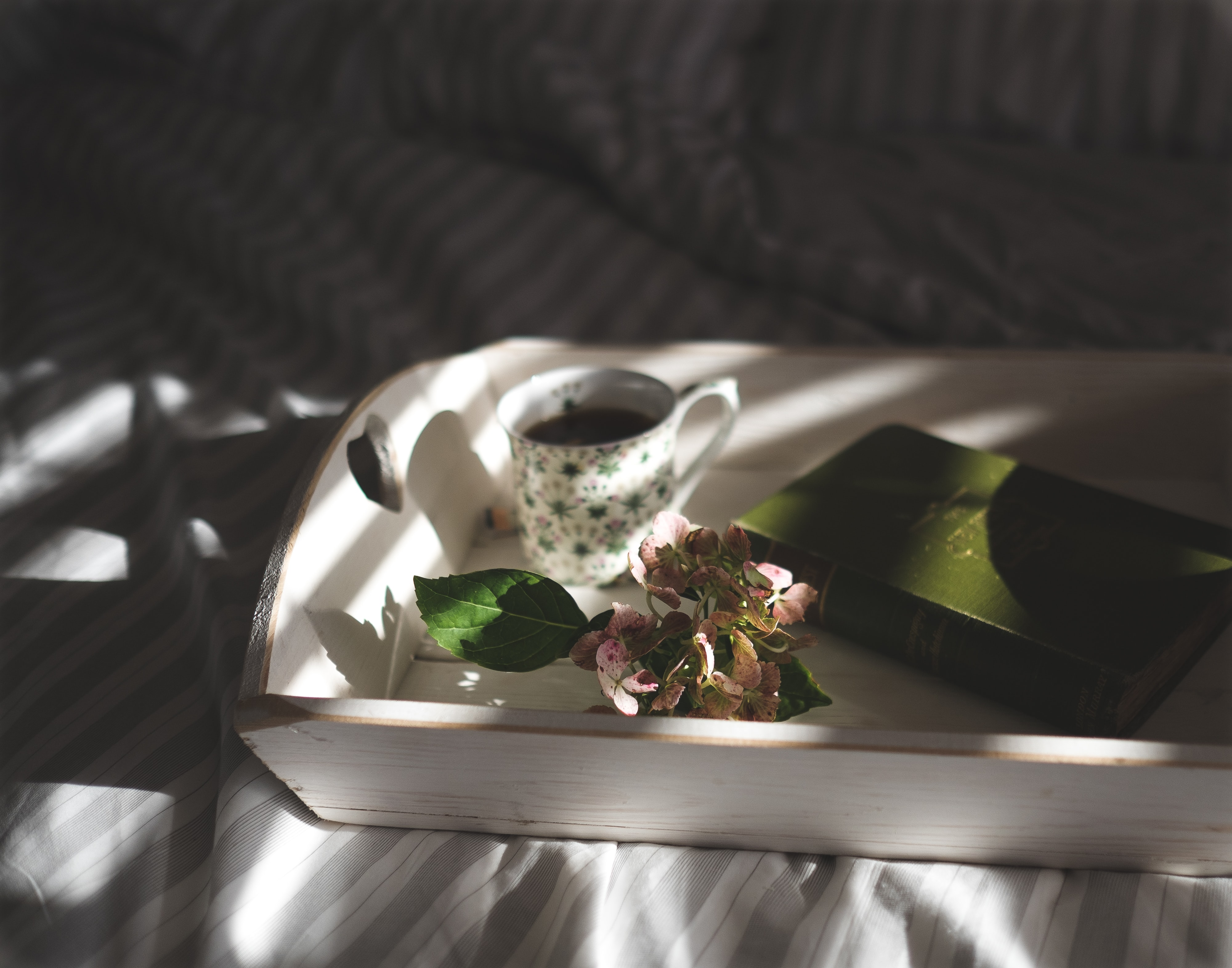 A book, a cup of coffee and a cluster of hydrangea flowers on a wooden tray