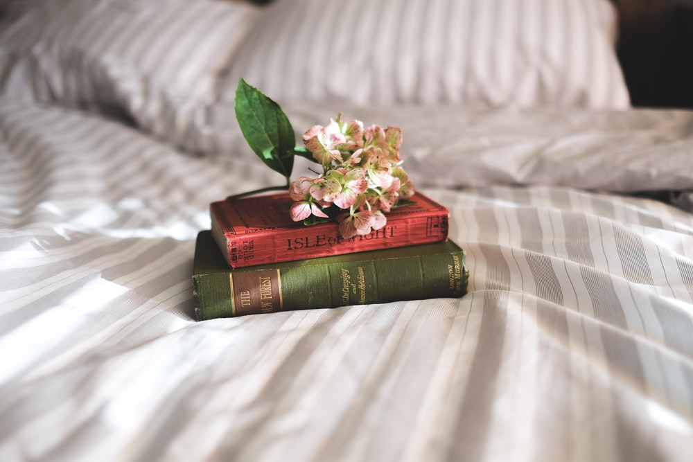two books on bed