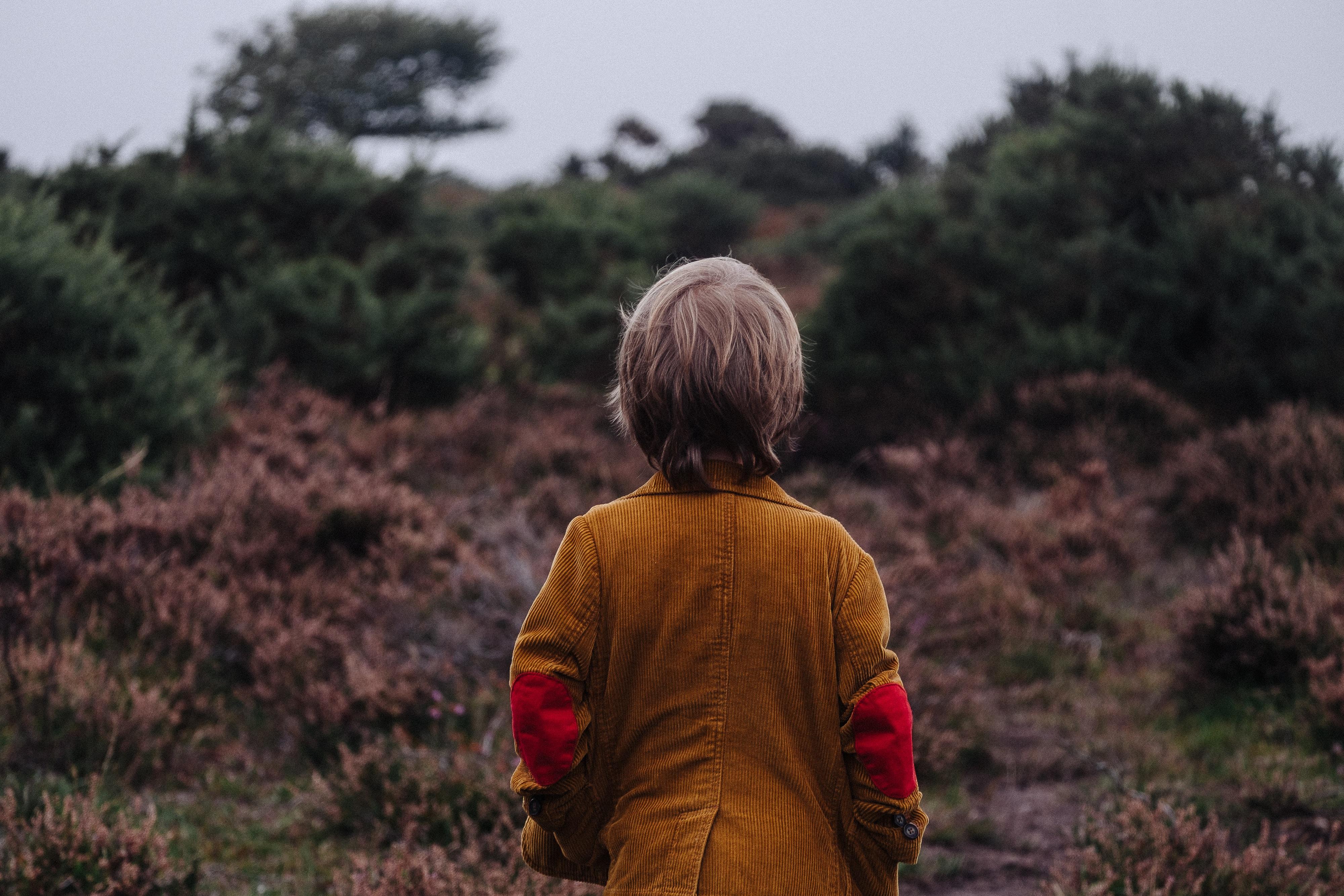 A small boy on a grassland near green bushes