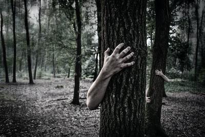 Man grabbing a tree