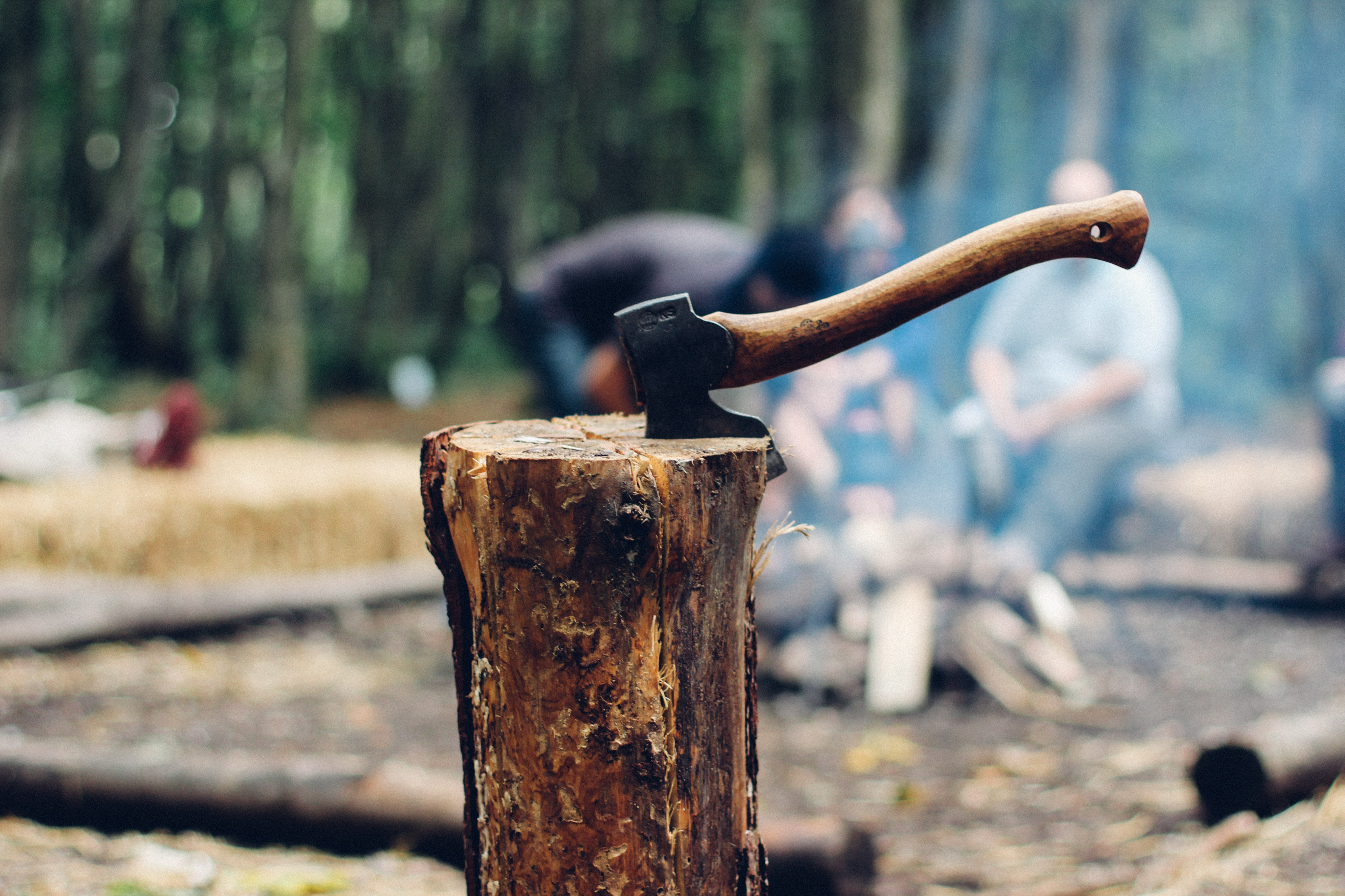 axe on tree log next to people sitting next to bonfire