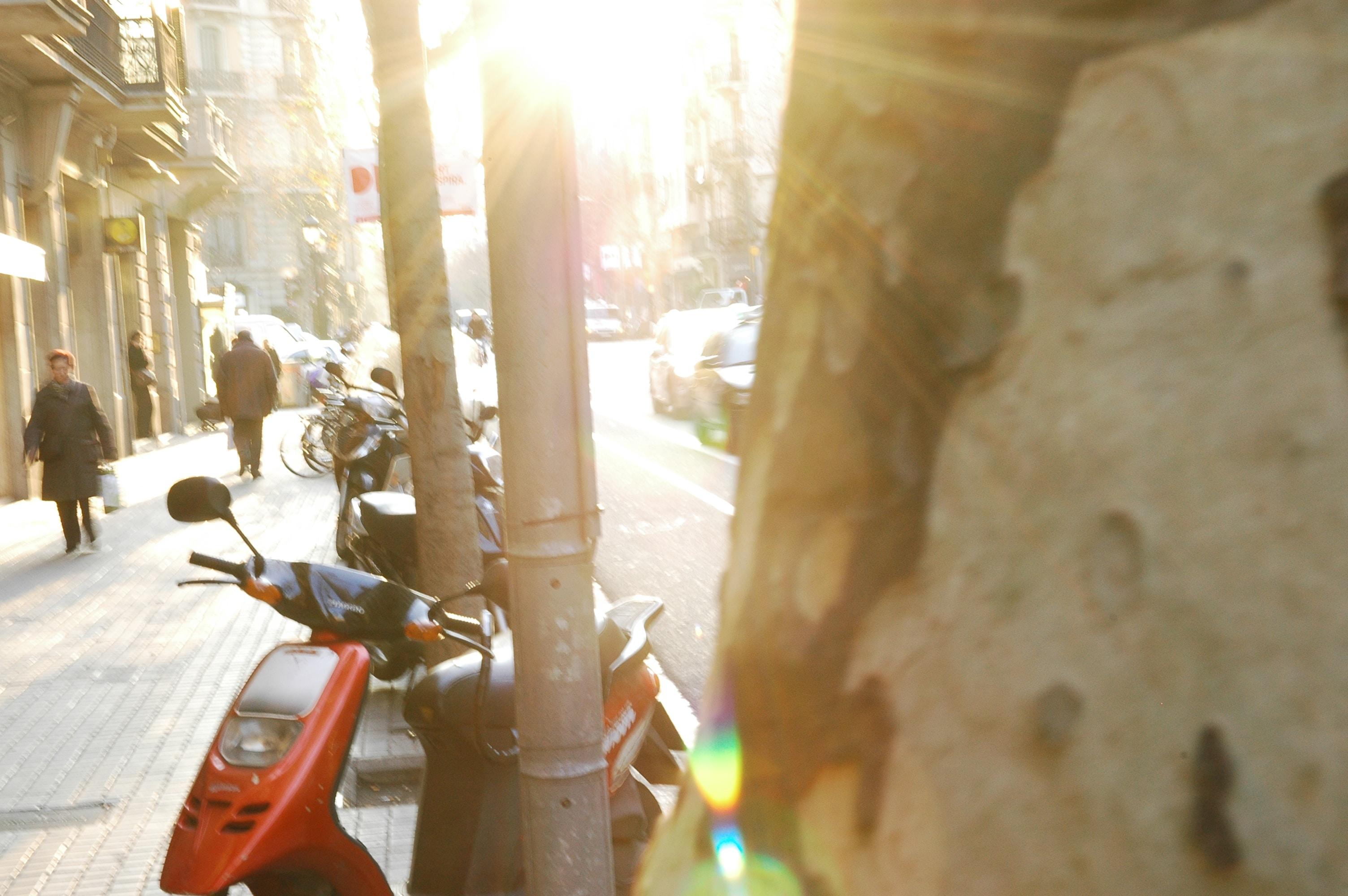 Free Unsplash photo from Ian Sutter