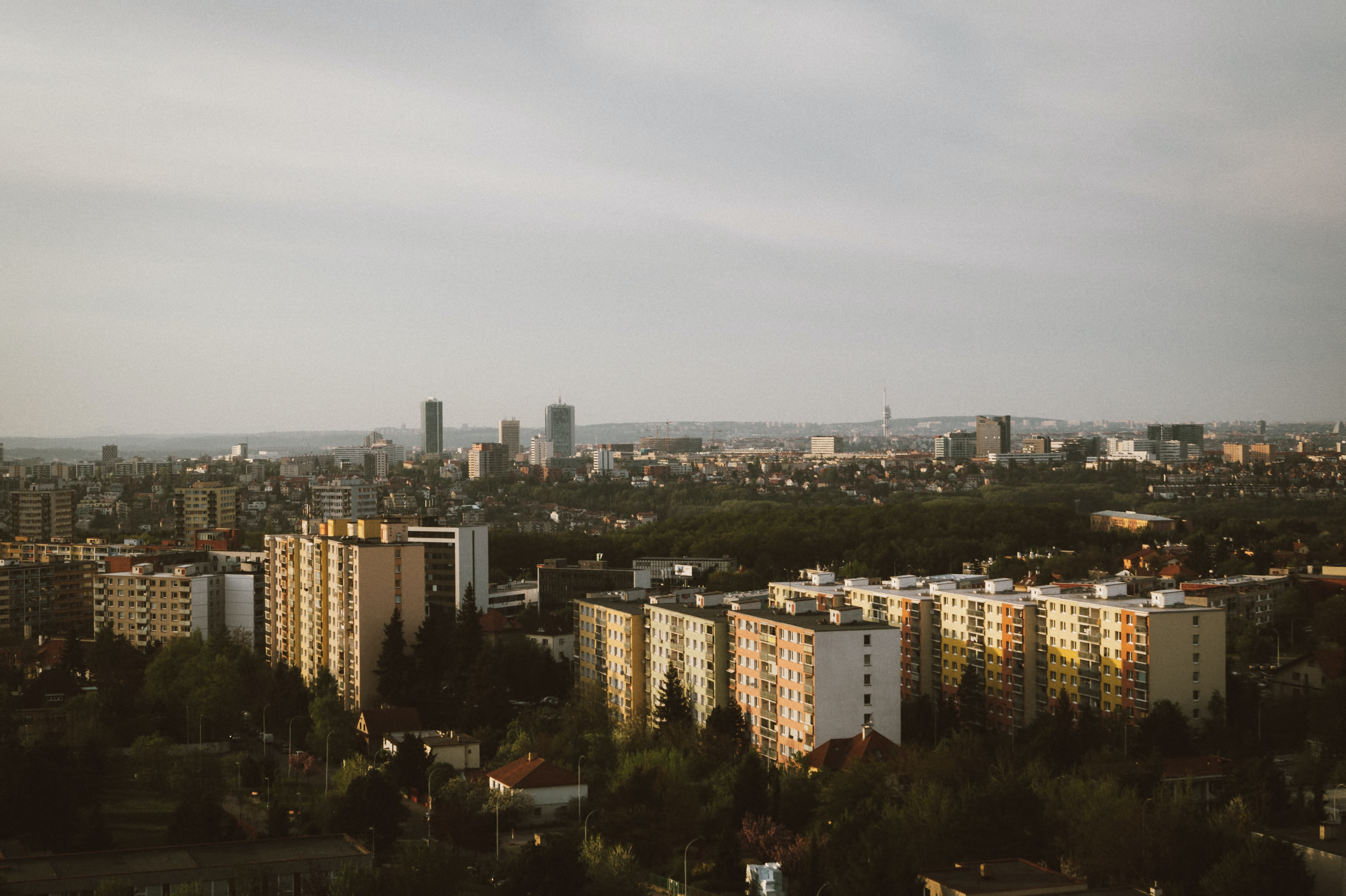 Tower blocks and skyscrapers in a Central European city