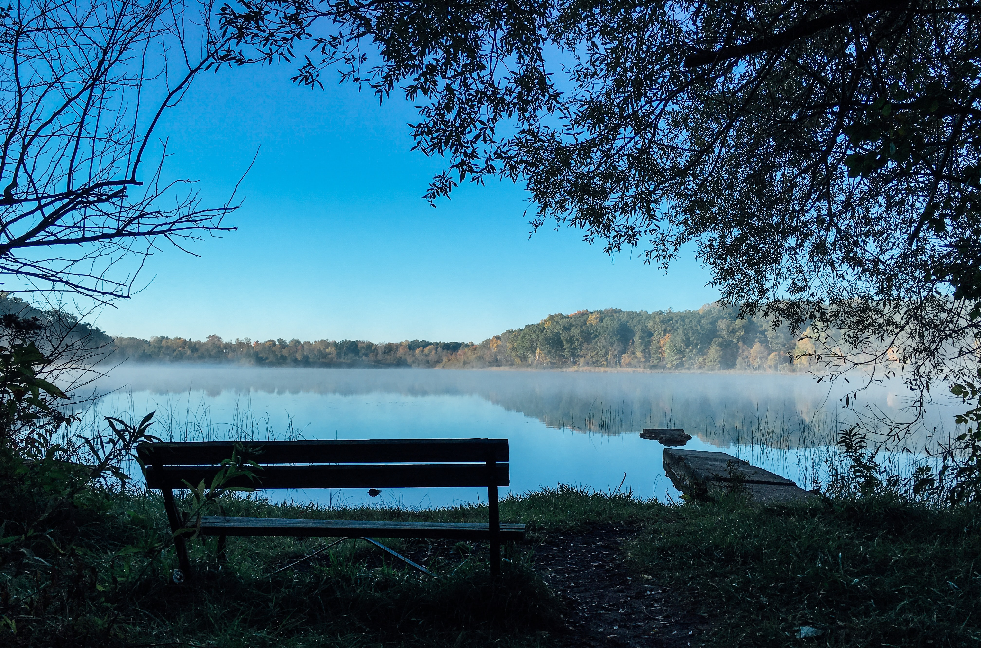 bench in front of body of water