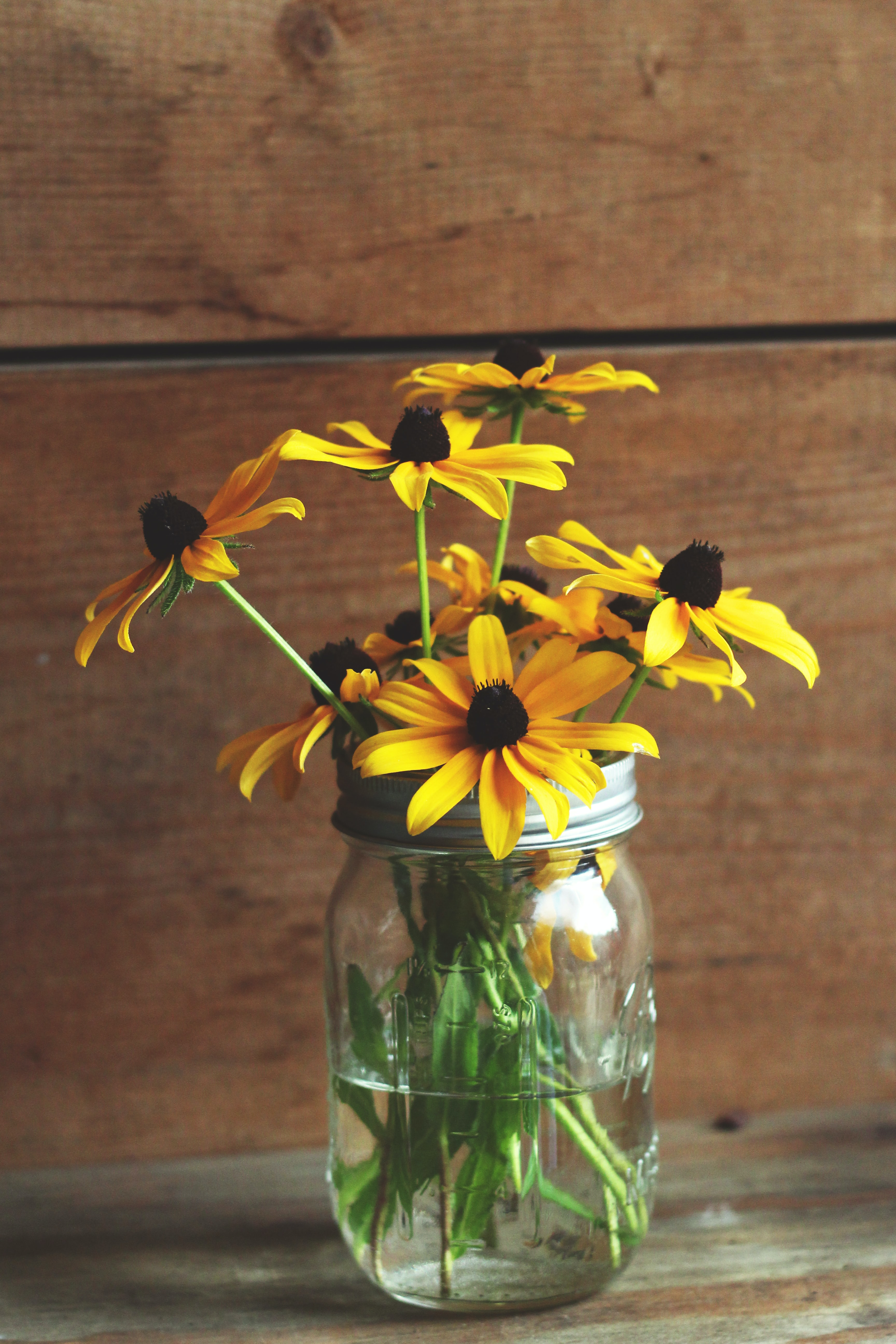 Yellow black-eyed Susan flowers in a glass jar
