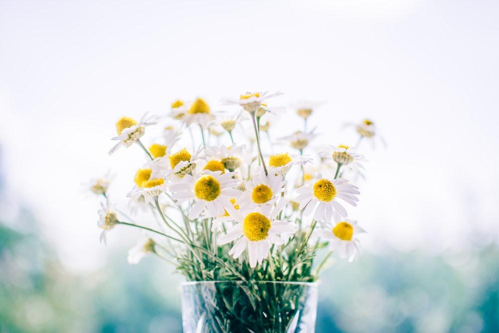 HUE詼-花藝測驗、婚禮花藝