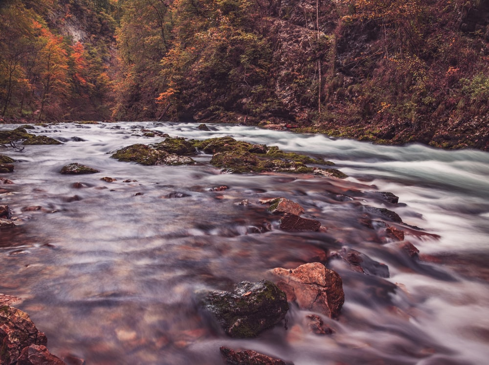 timelapse photography of river