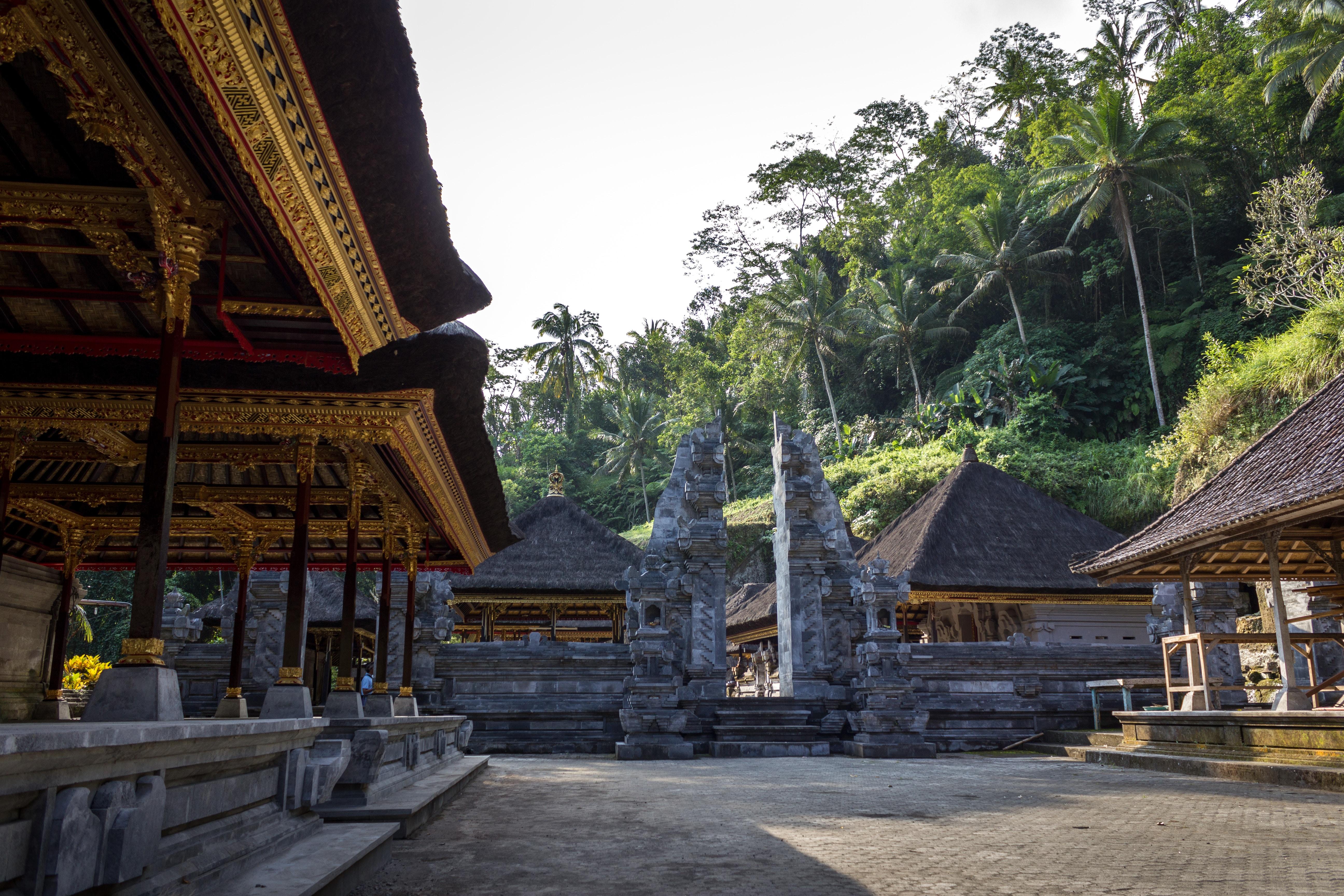 pagoda tower near tall trees