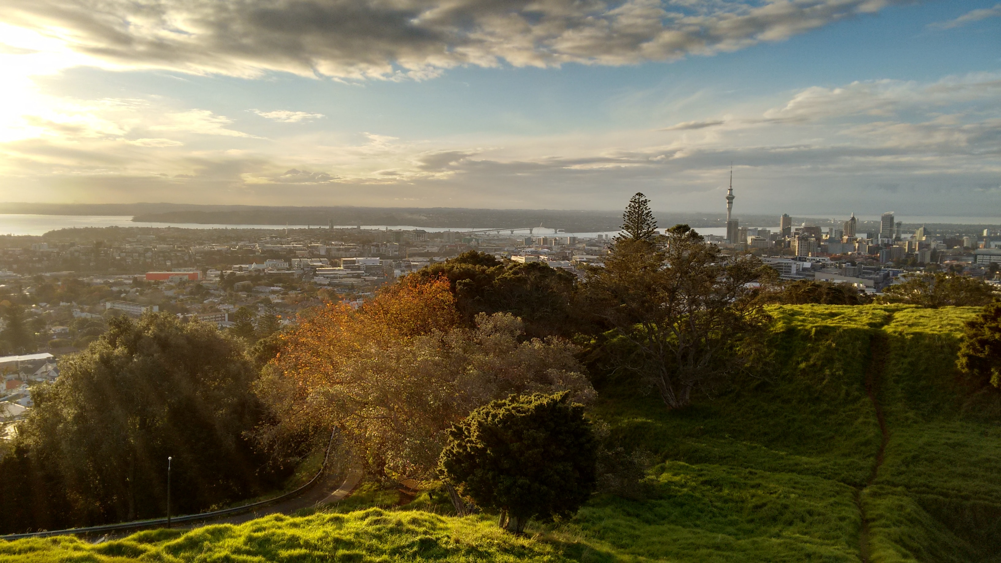 The skyline of Auckland under fluffy clouds seen from a green hill near the city