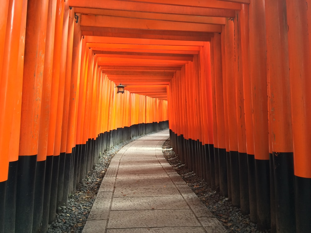 orange and black arc