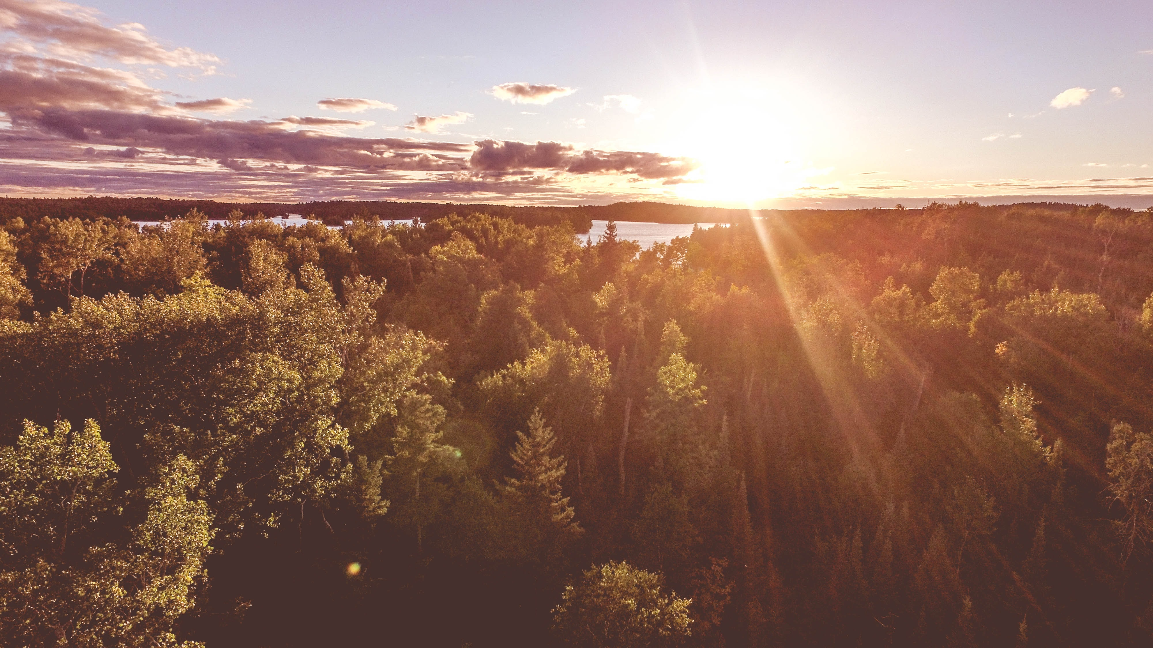 Warm sunrays over a forest near a river bend in Ontario