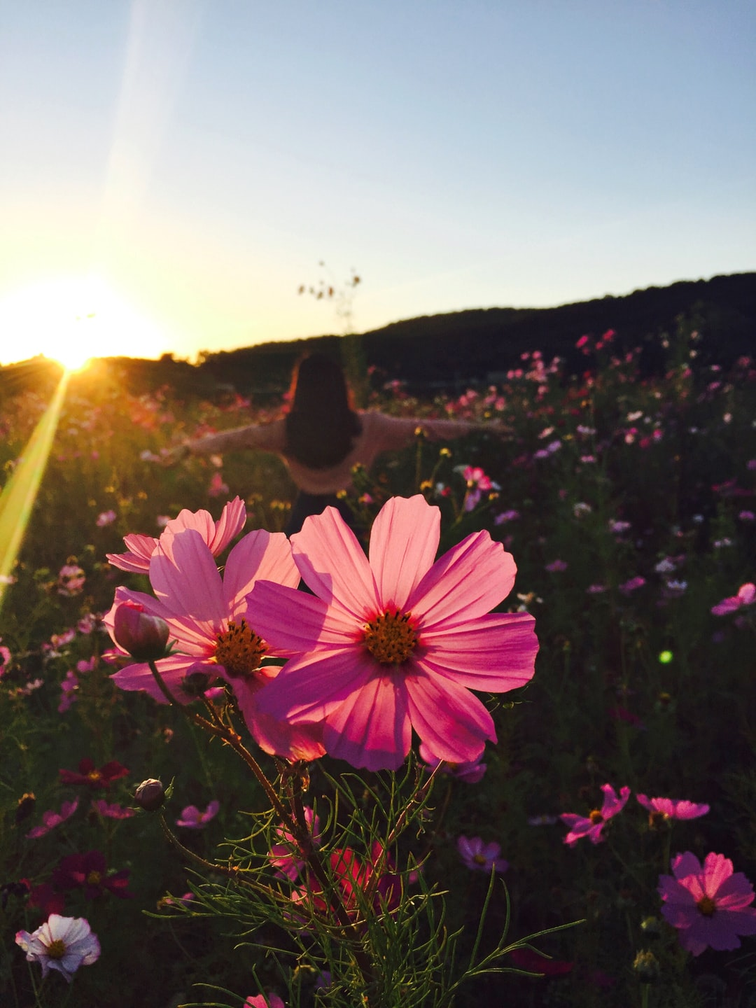 Dancing in the meadow at dusk