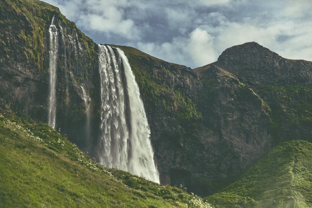 waterfalls near cliff and trees during daytime