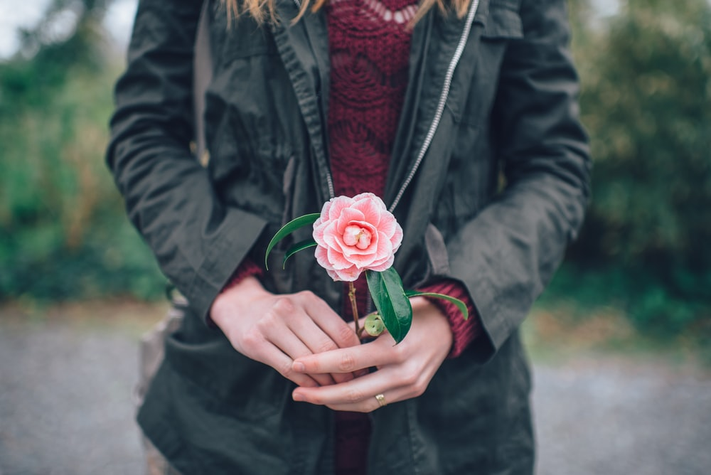 woman holding pink rose standing near trees during daytime