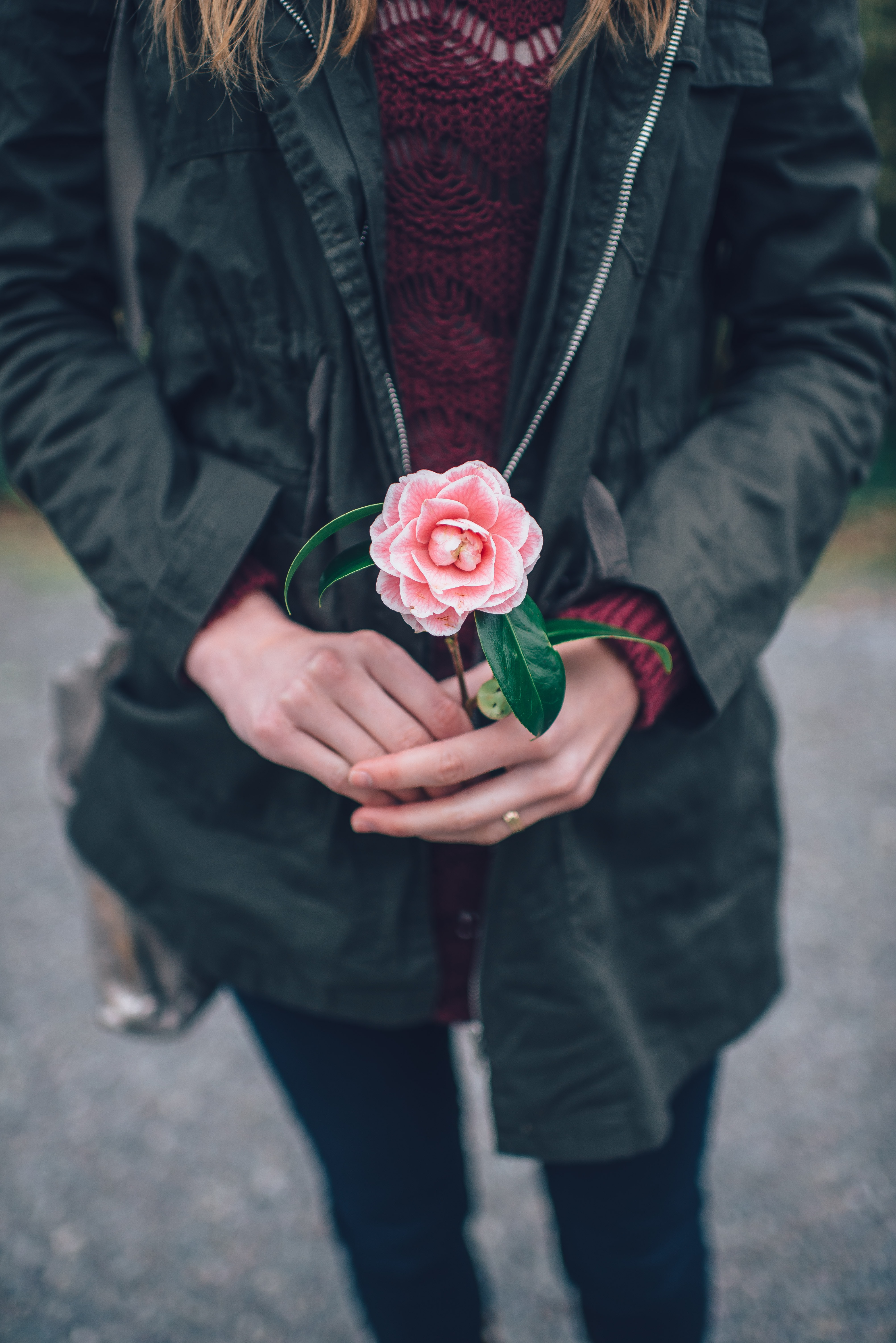 Woman in coat holds in a single pink rose in her hands