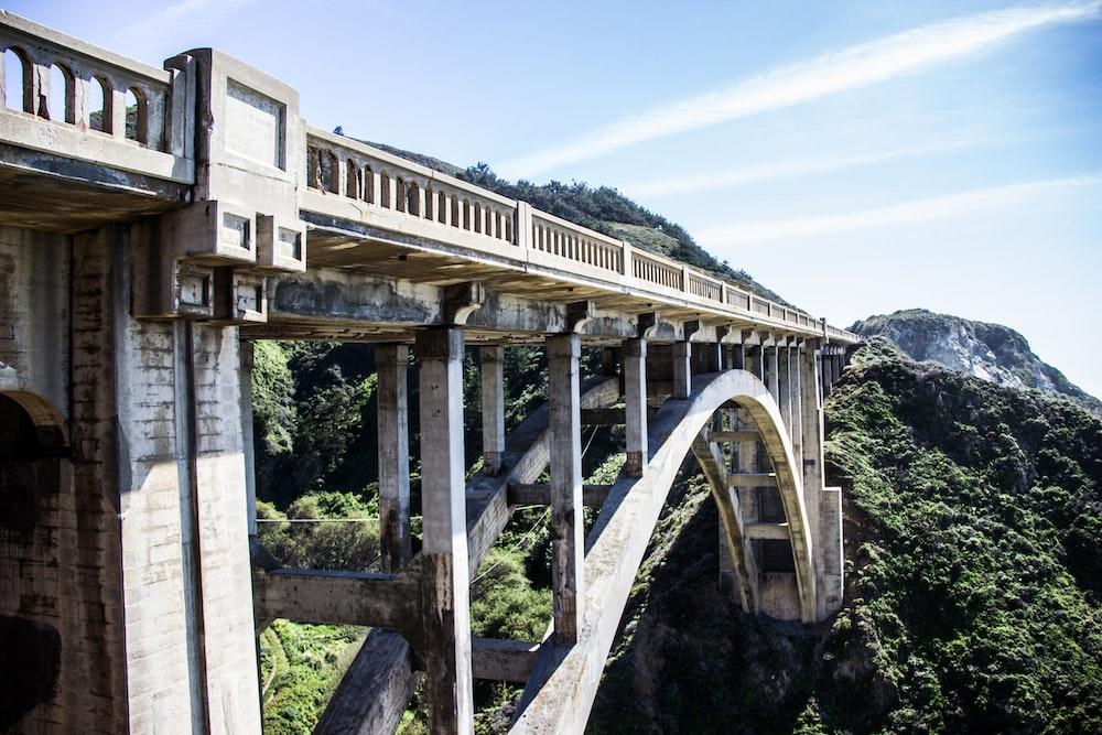 concrete bridge near green forest during daytime