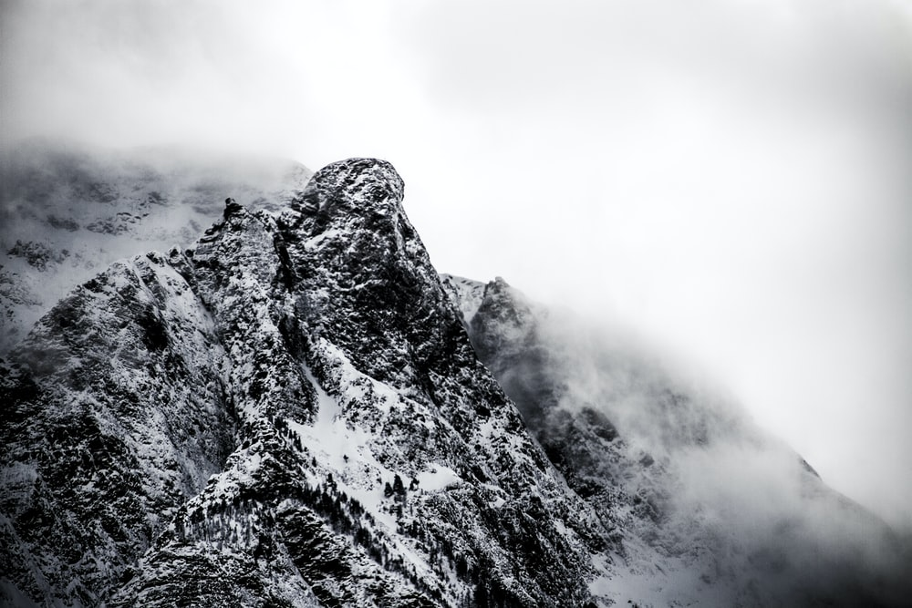 mountain coated by fog