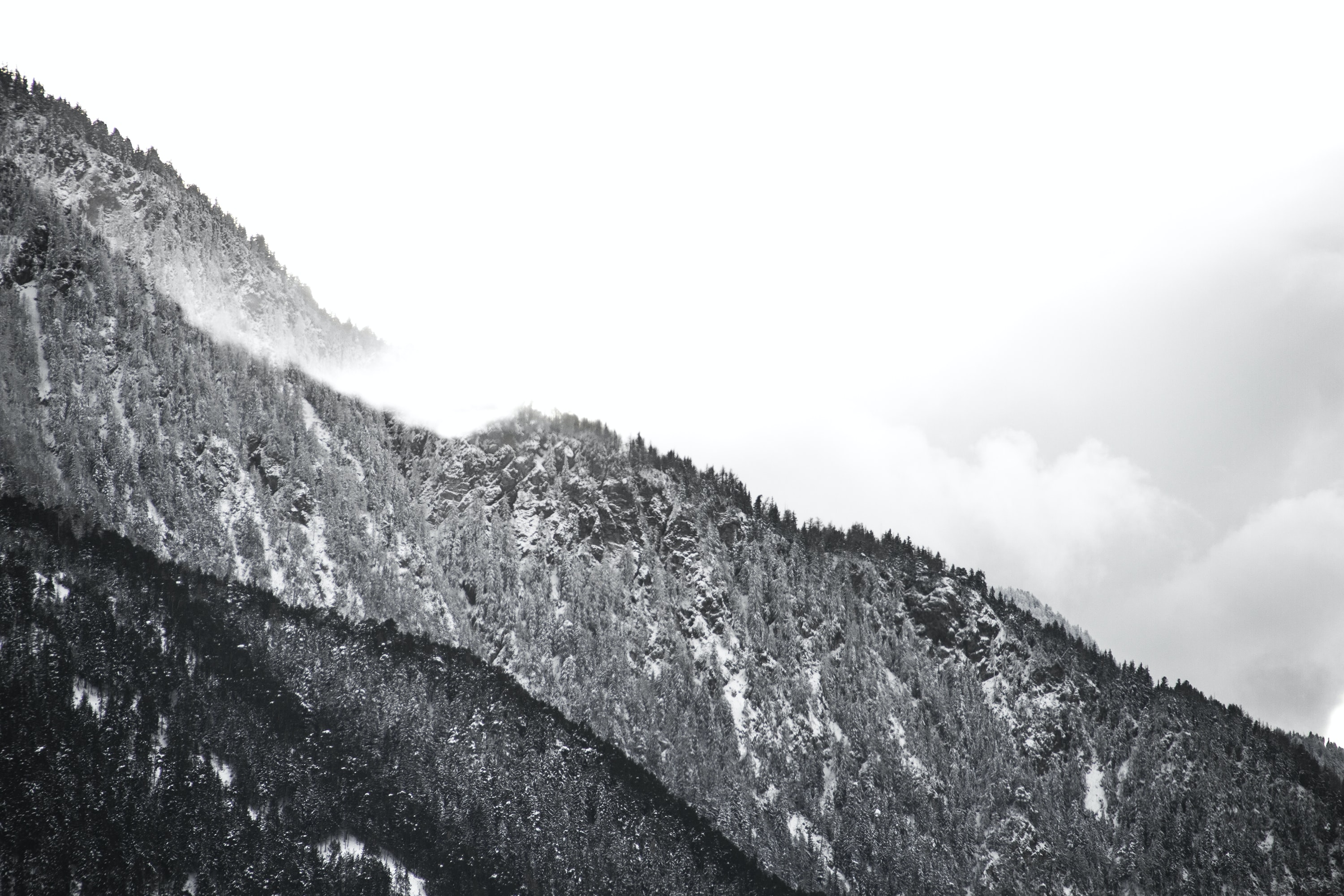 A black-and-white shot of wooded mountain slopes in Ried-Brig