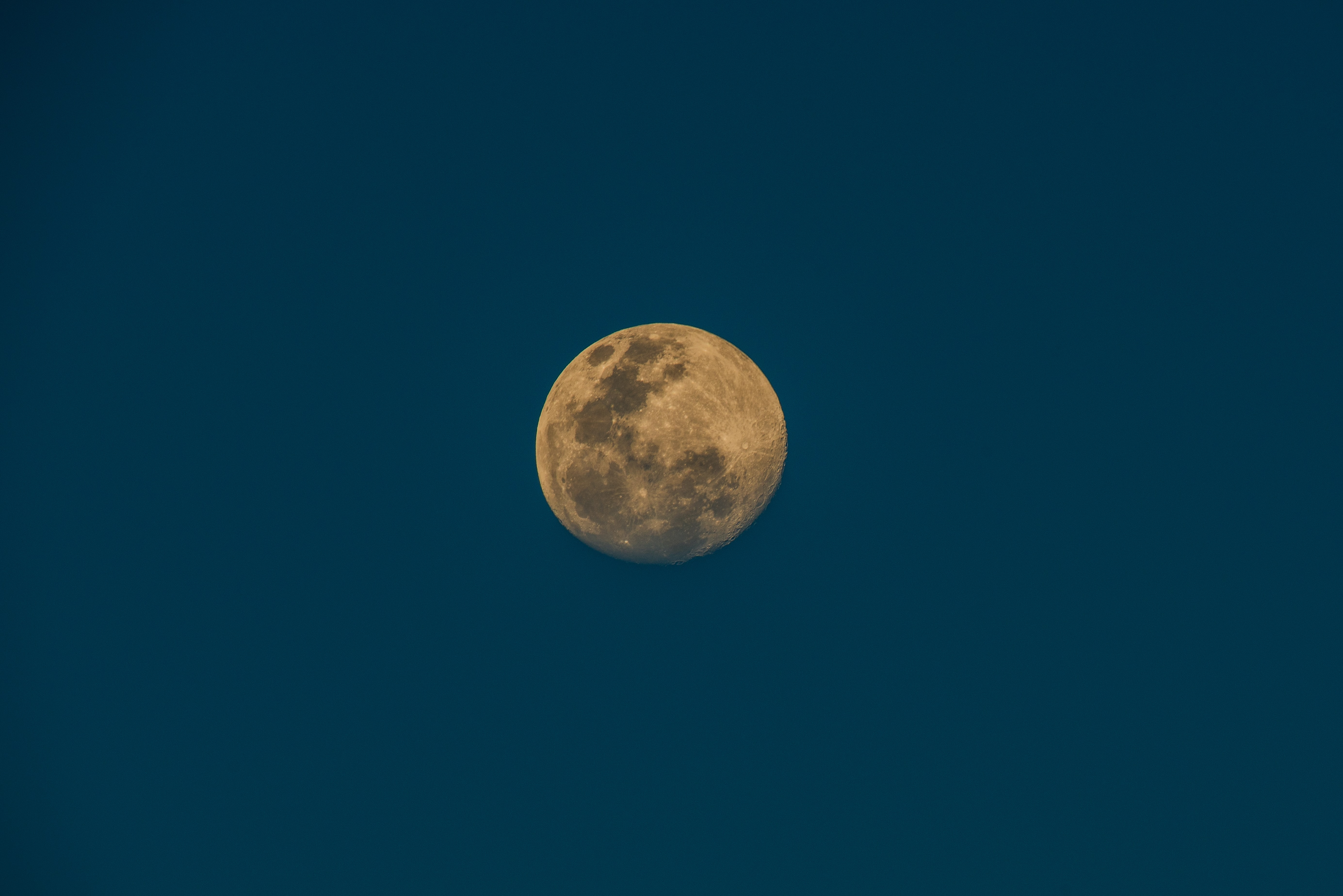 The super moon on the night sky over Footscray