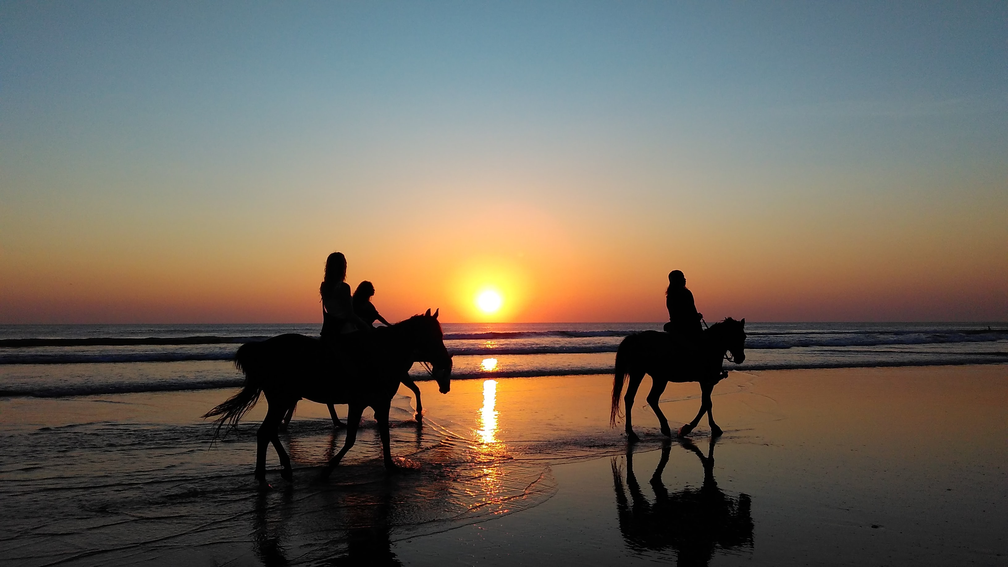 Silhouettes of people riding horses through shallow water on a beach during sunset