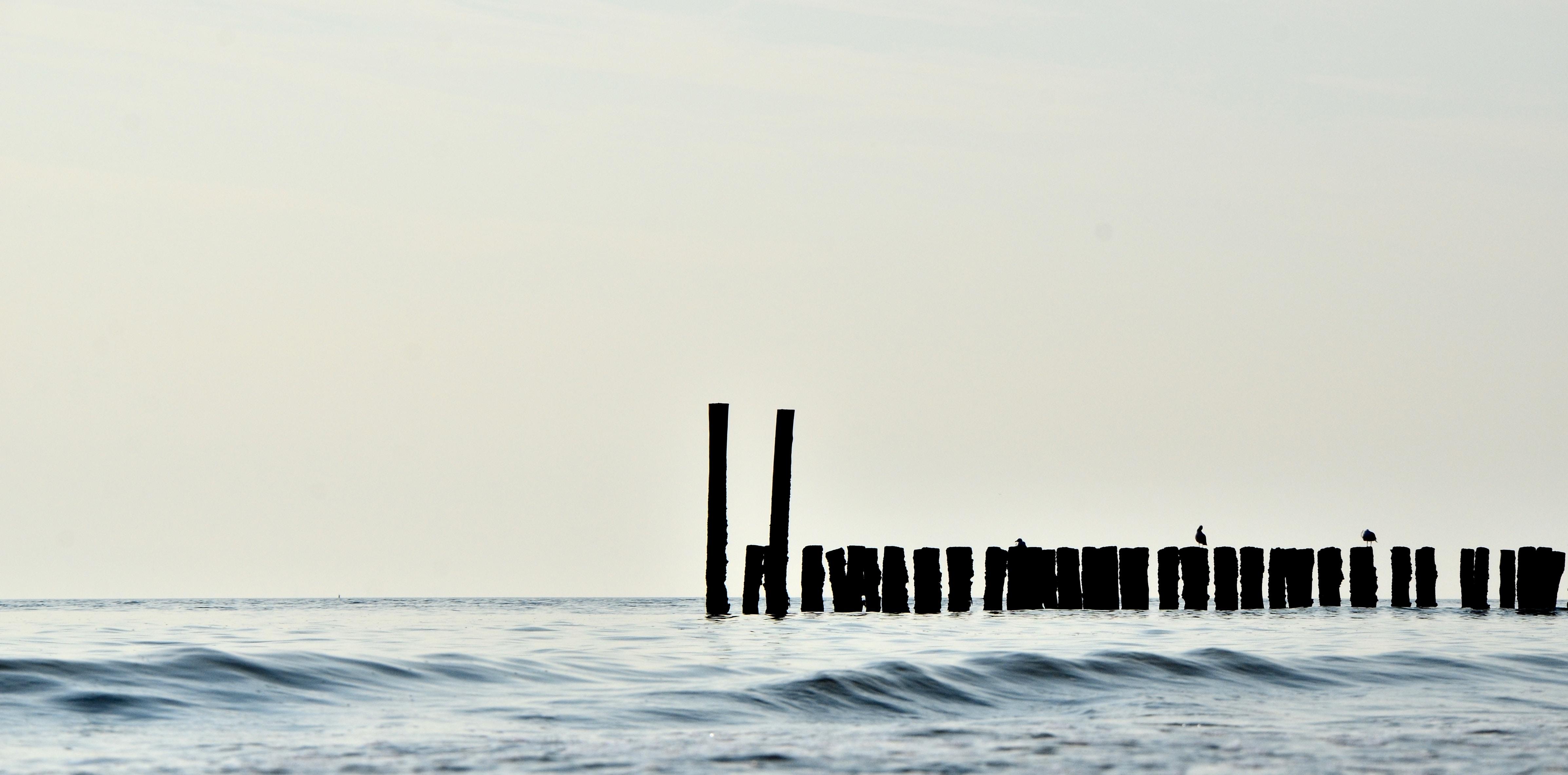 lumber in body of water