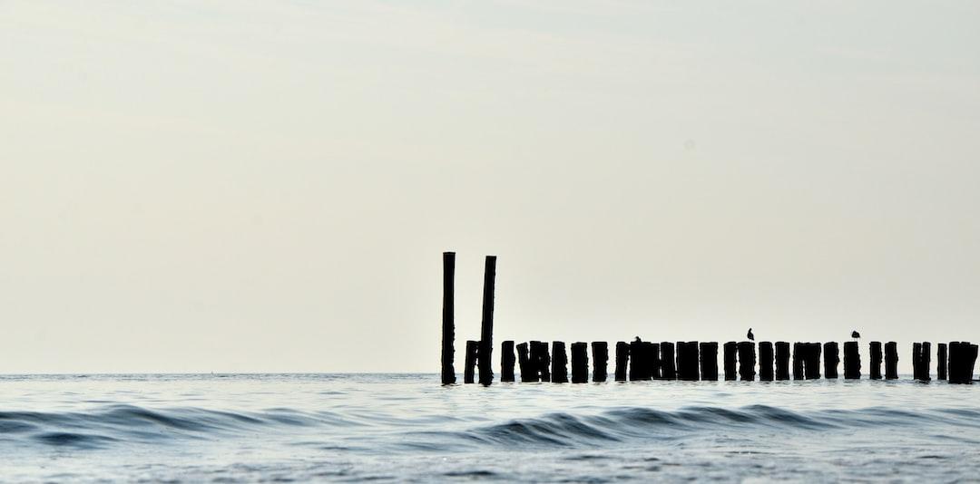 Old pier poles