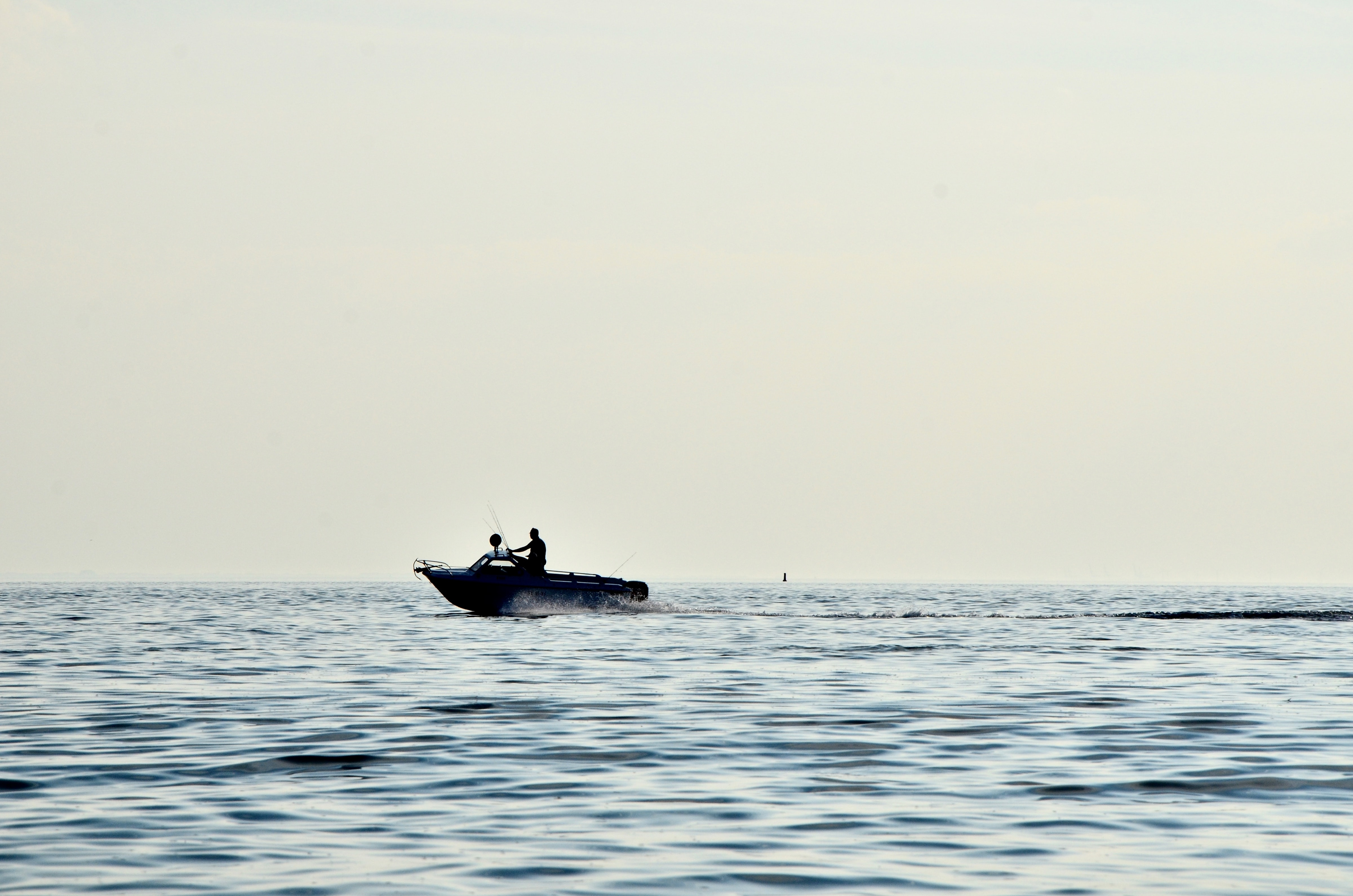 person driving speedboat on sea