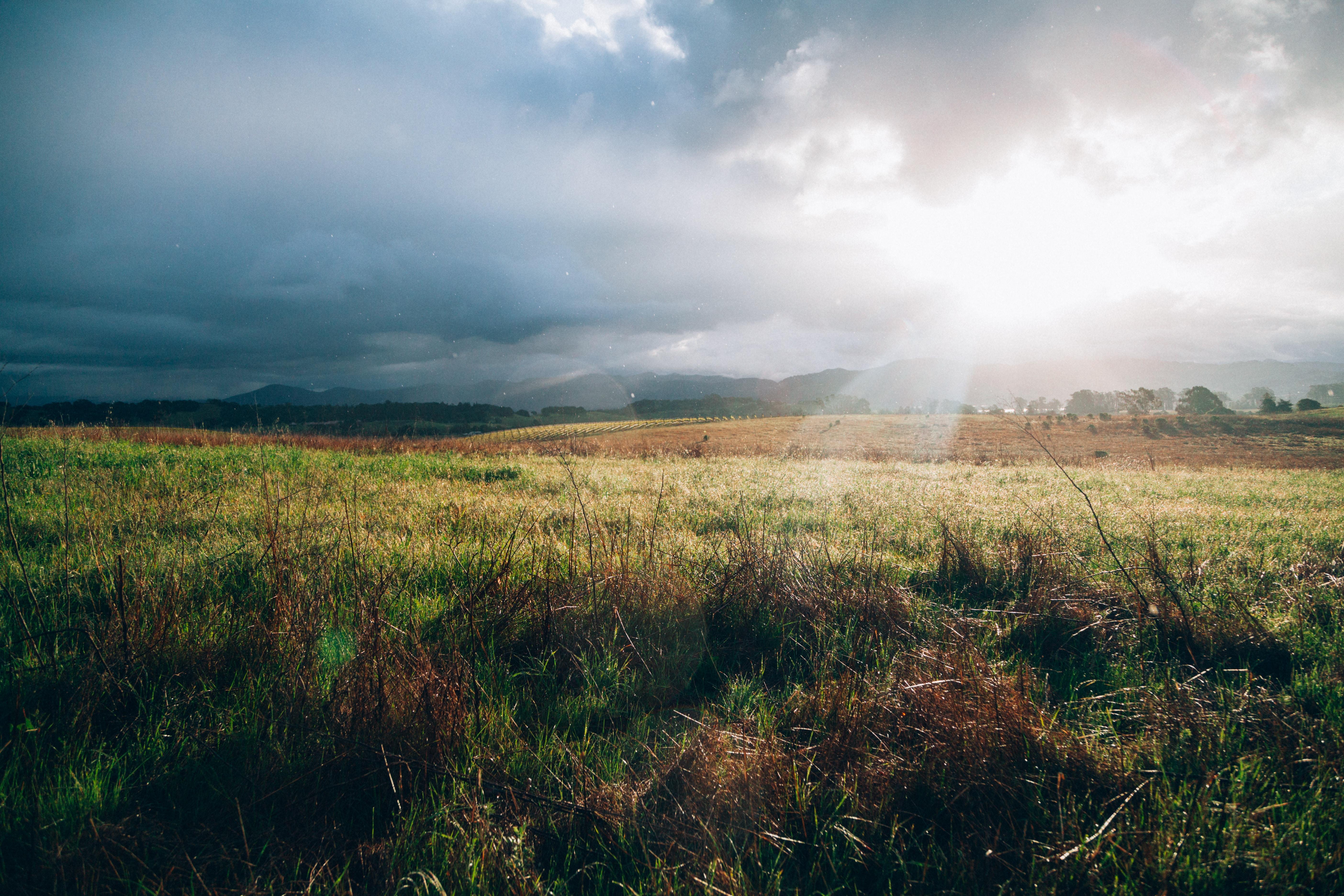 green grass field near mountains in sunset
