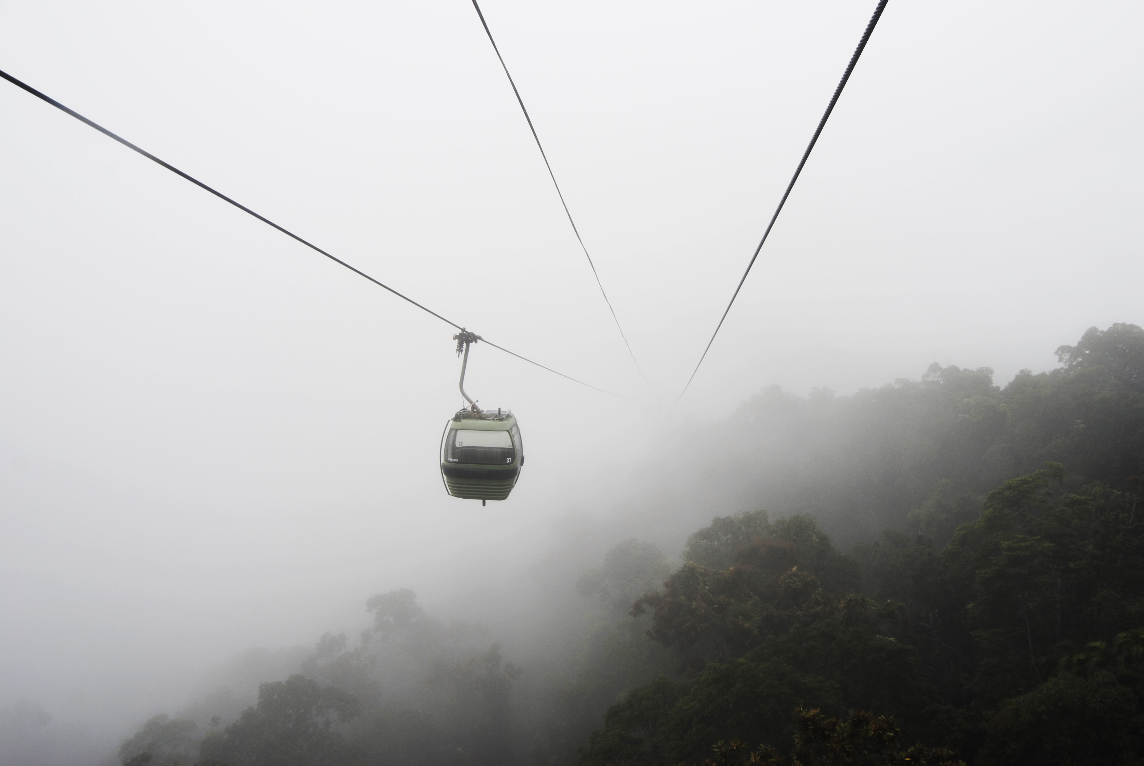 Cable lift rides over the forest canopy through mist