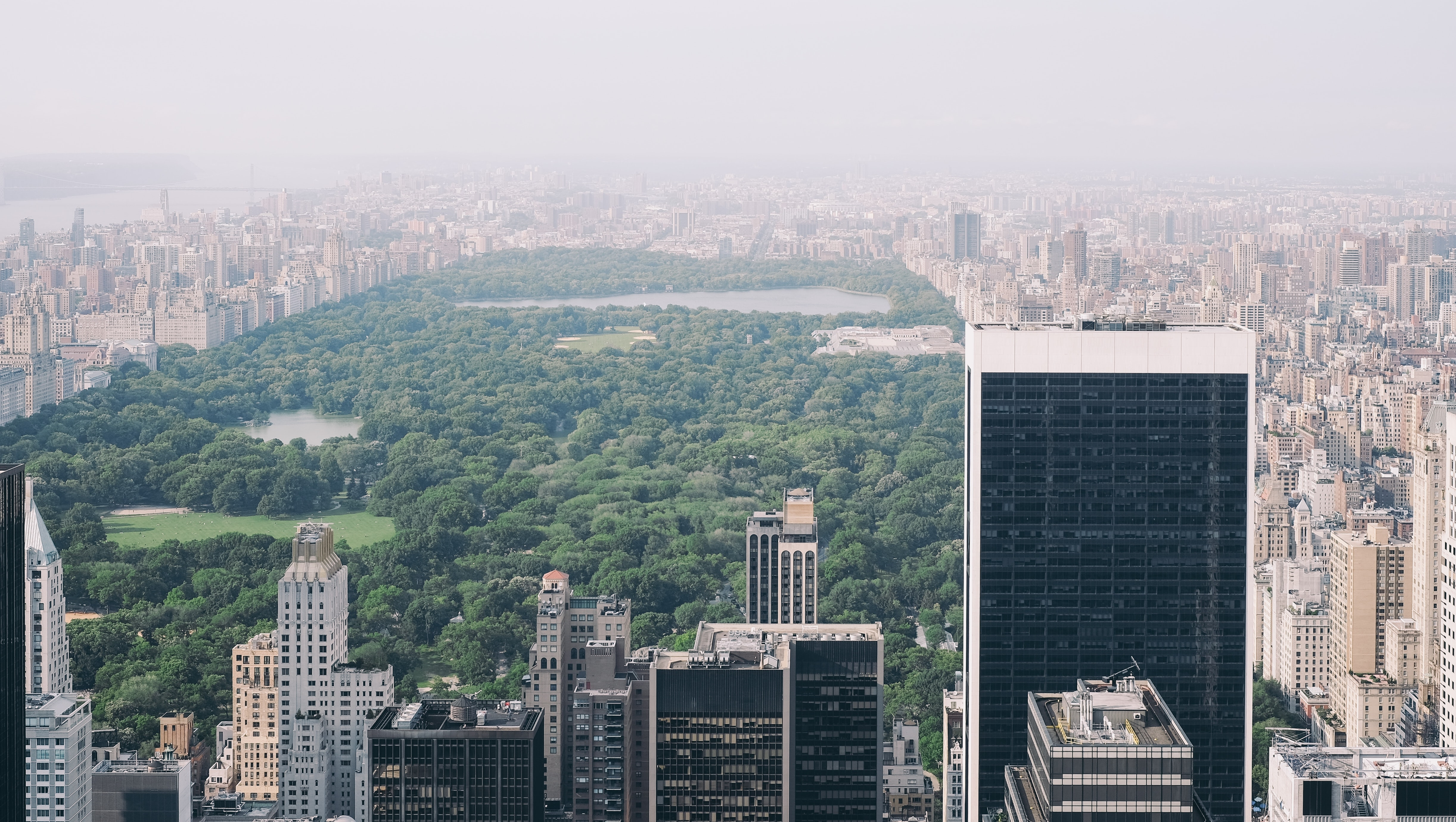 Drone view of Central Park in summer with green trees and the New York City skyline