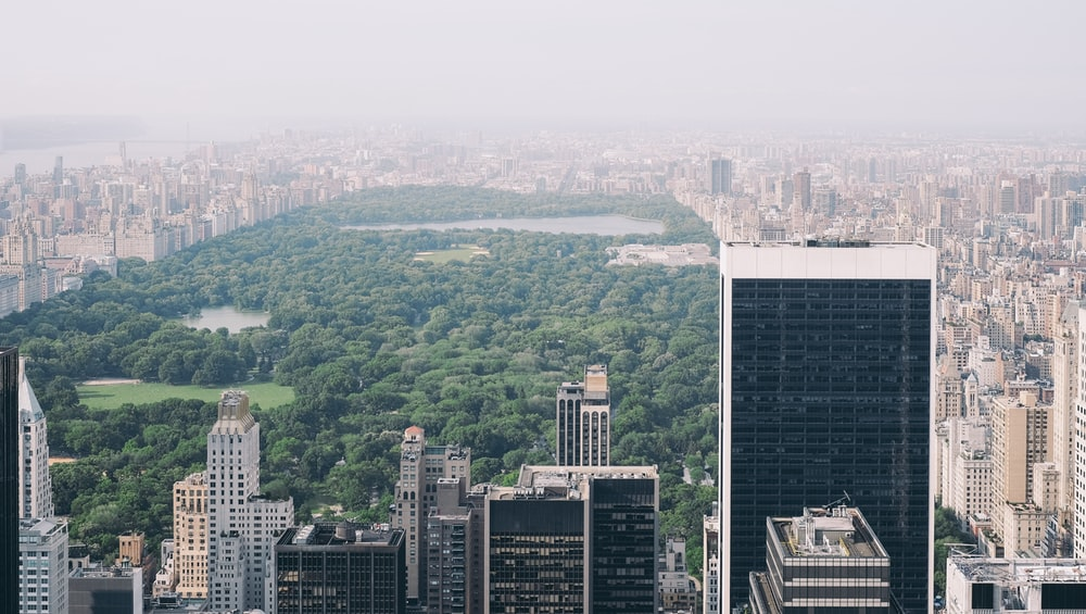 aerial photo of Central Park, New York