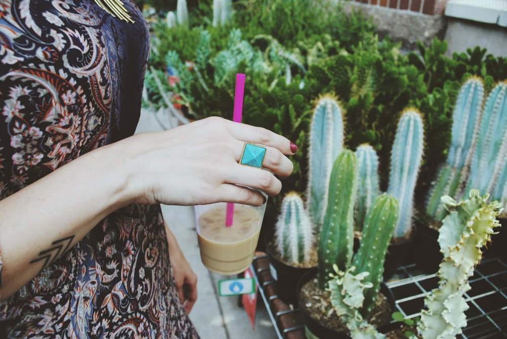 person holding disposable cup in front of cactus plants