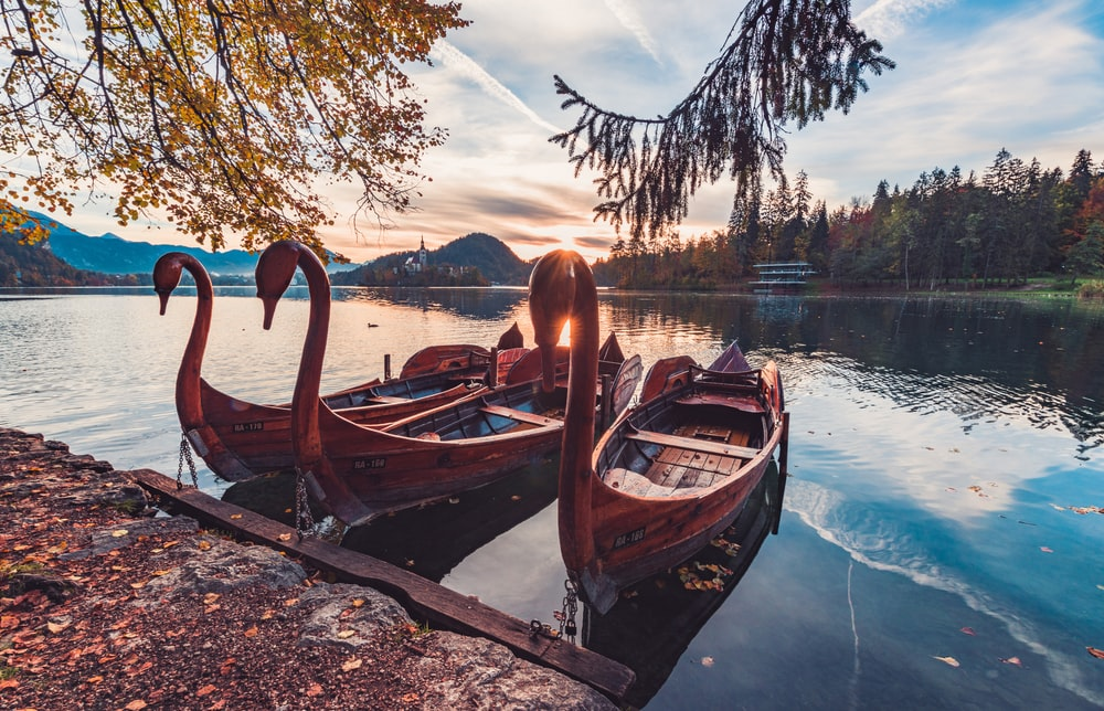 three brown paddle boats on body of water