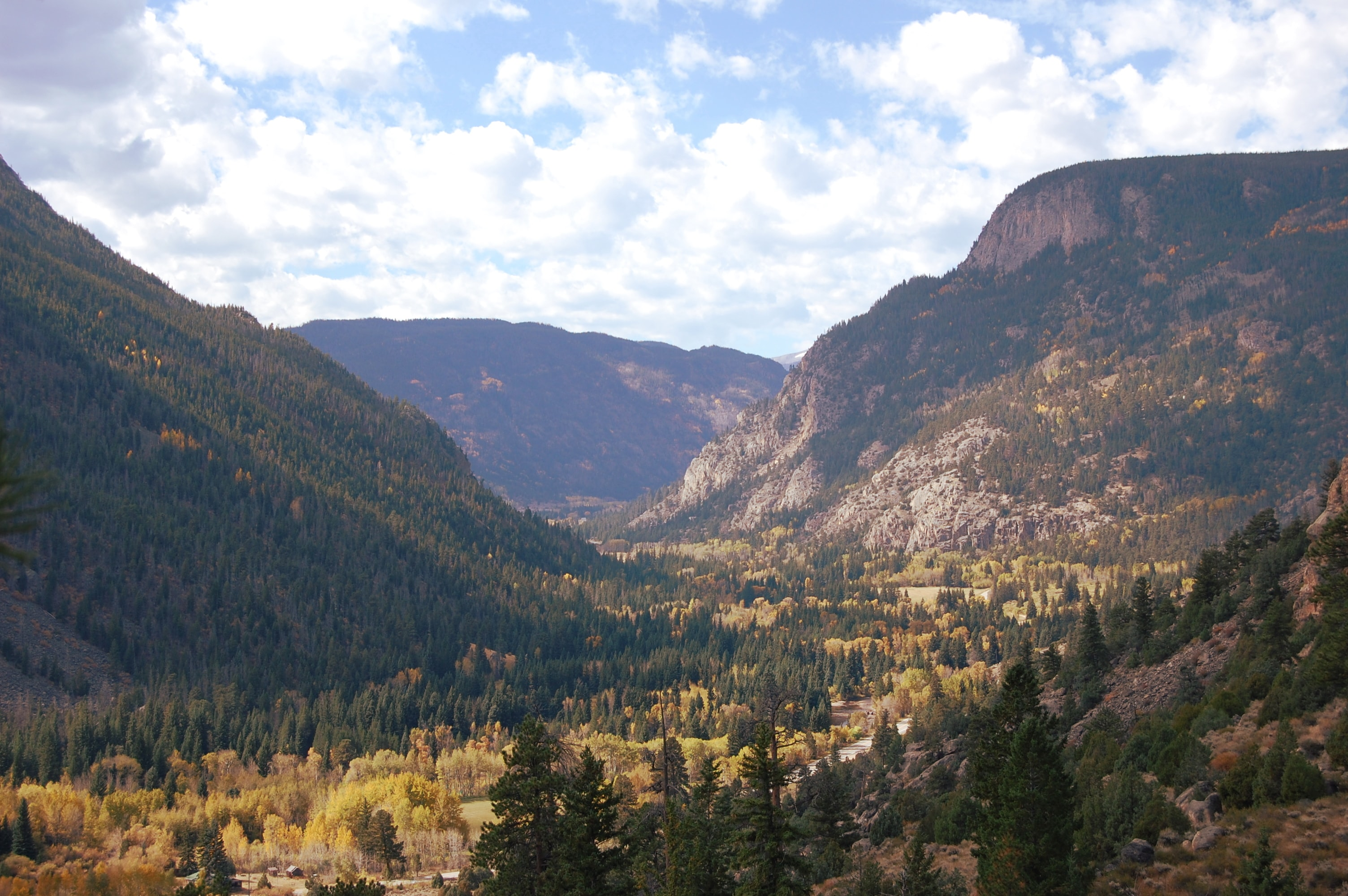 A wooded mountain valley in Colorado in the autumn