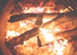 two white marshmallow on gray metal stick