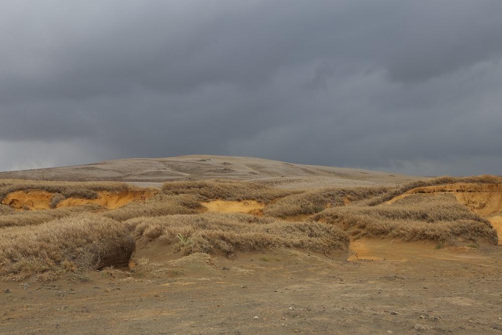 brown grass field mountain under cloudy sky