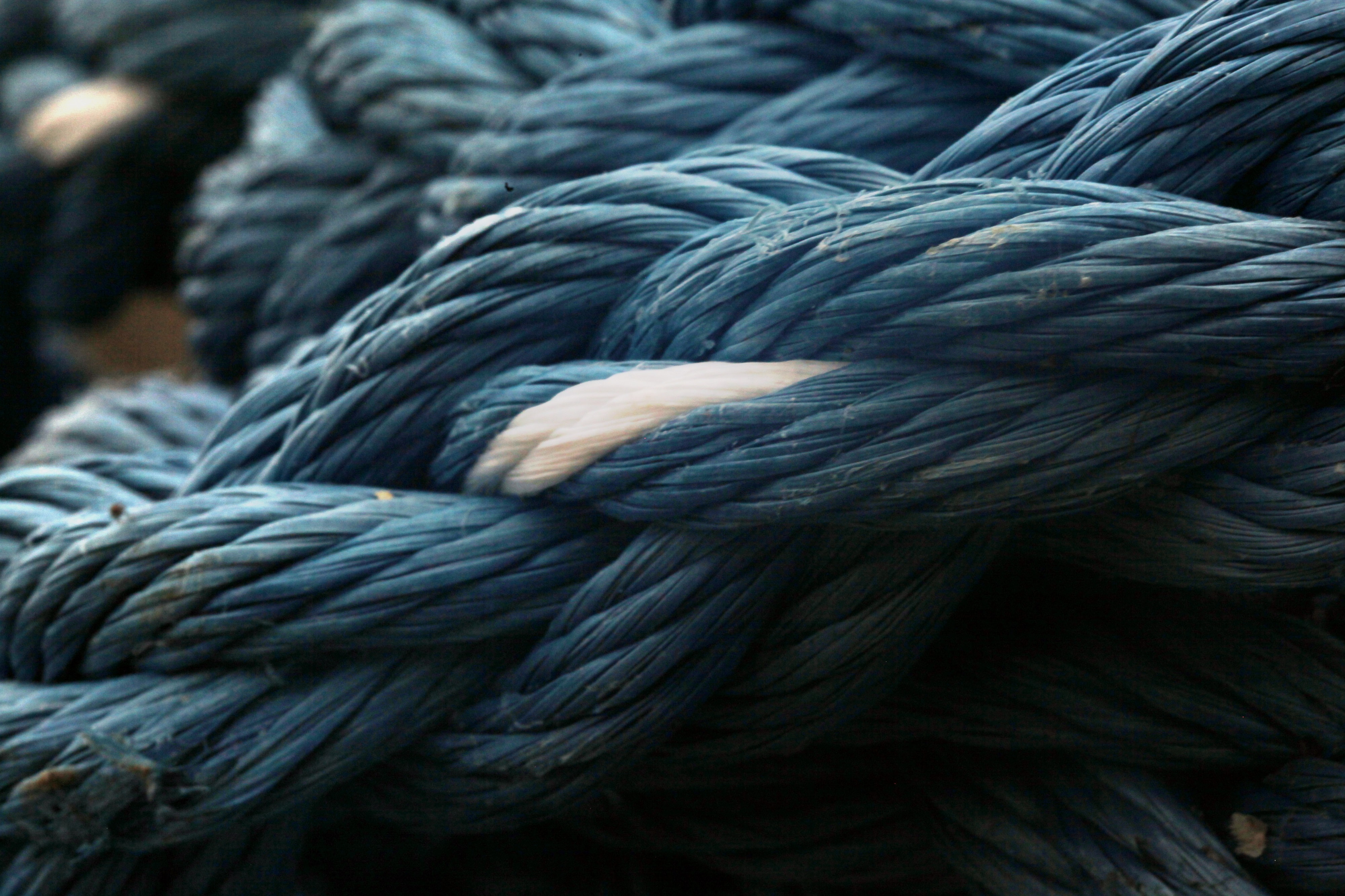 entangled blue and white ropes