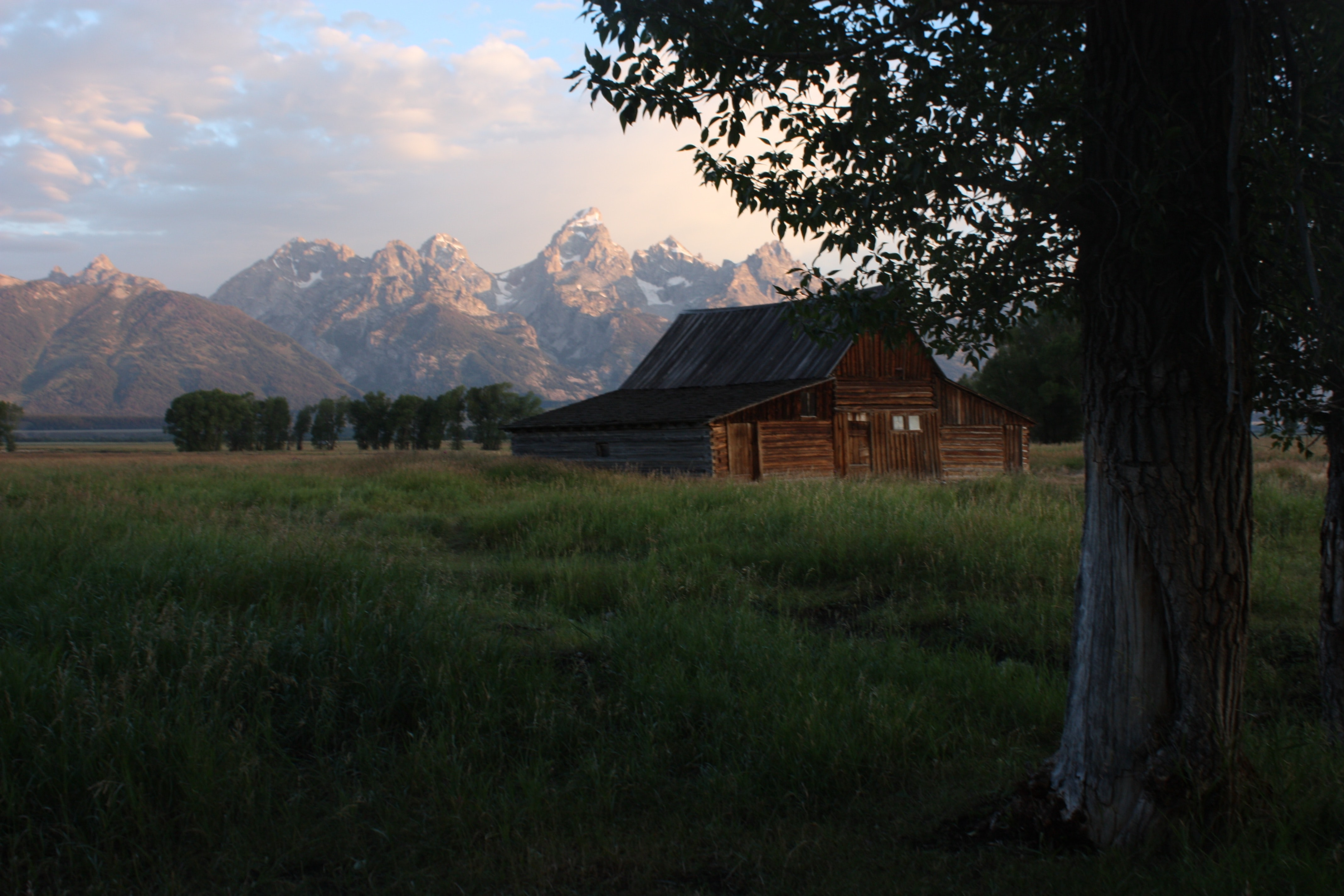 Rustic cabin in a green field with a large tree in the foreground and spiked mountains in the background