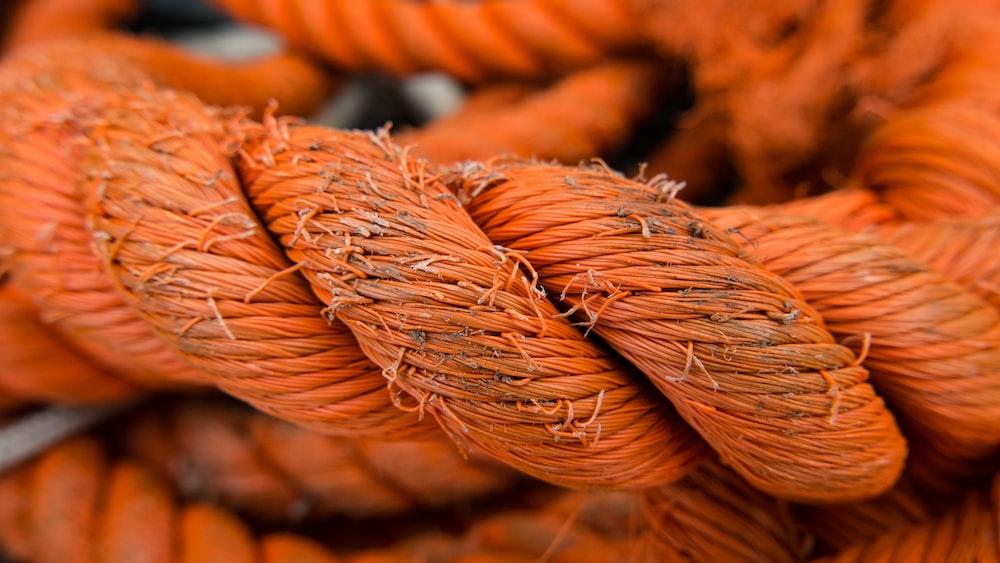 selective focus photo of orange rope