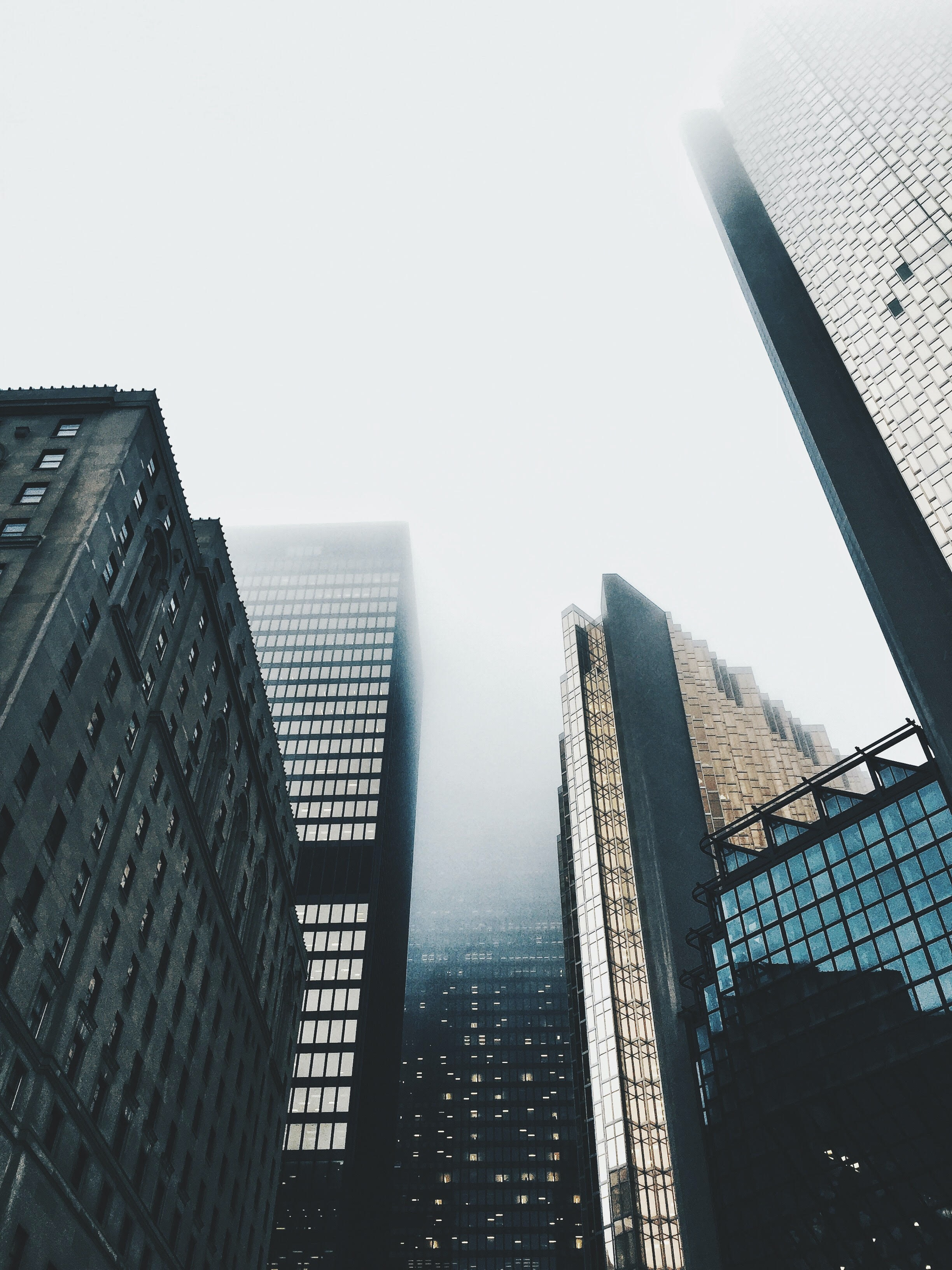 high-rise buildings covered with fog