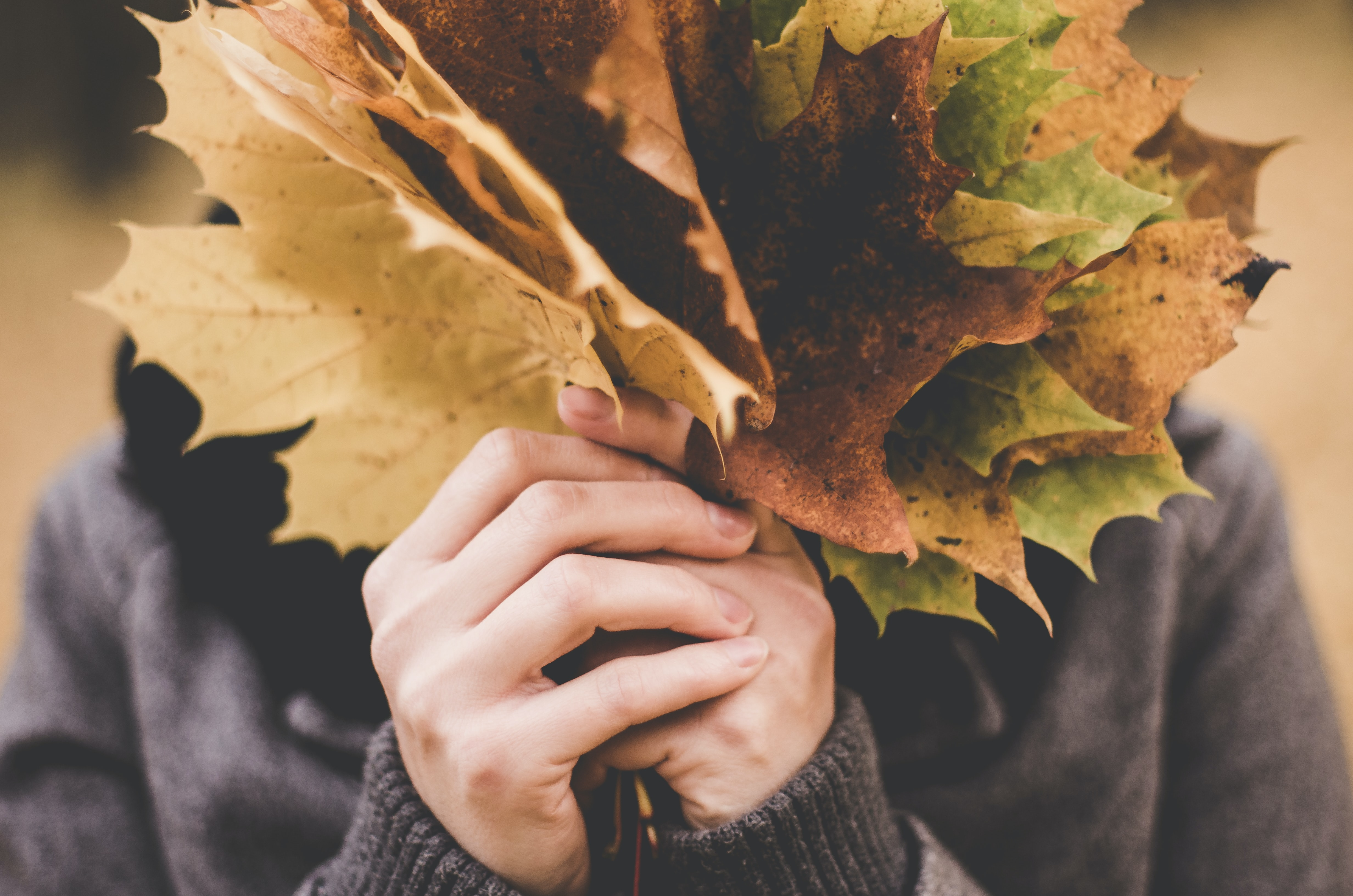 A person hiding their face behind a bouquet of autumn leaves in Wilanów