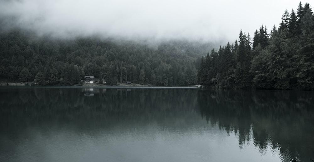 body of water under fog