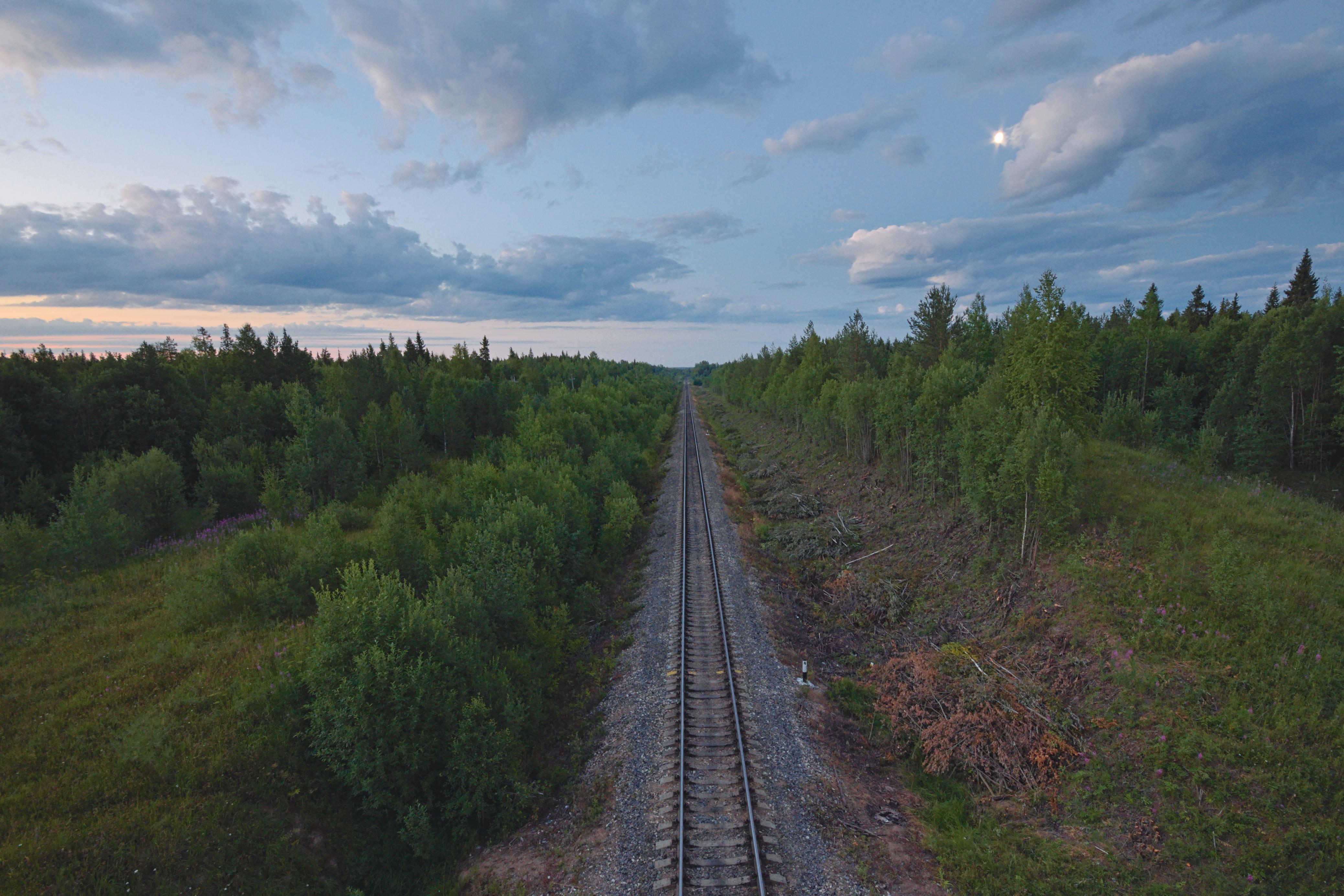 A drone view of a railroad passing through an empty forest in Архангельская область, Россия