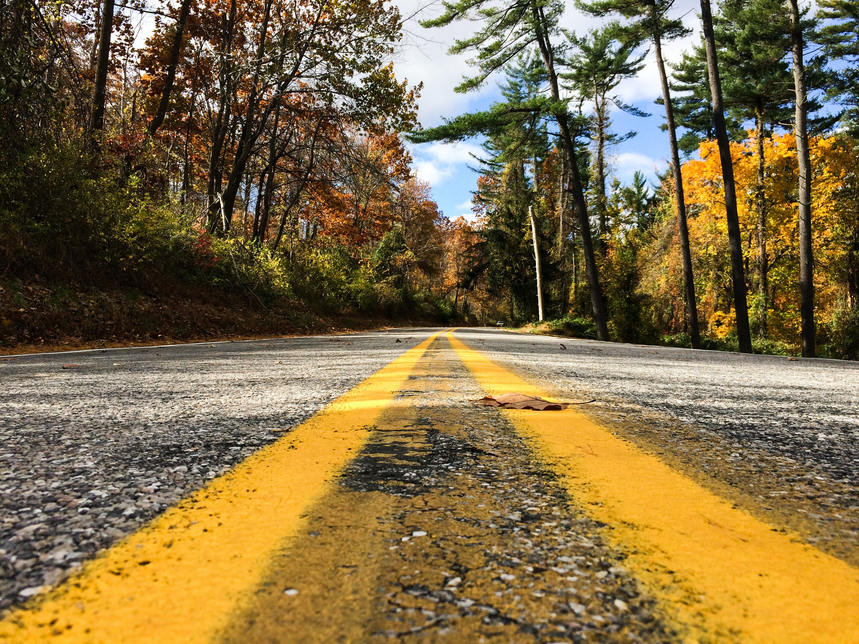 A low-angle shot of an empty asphalt road with several autumn leaves on it