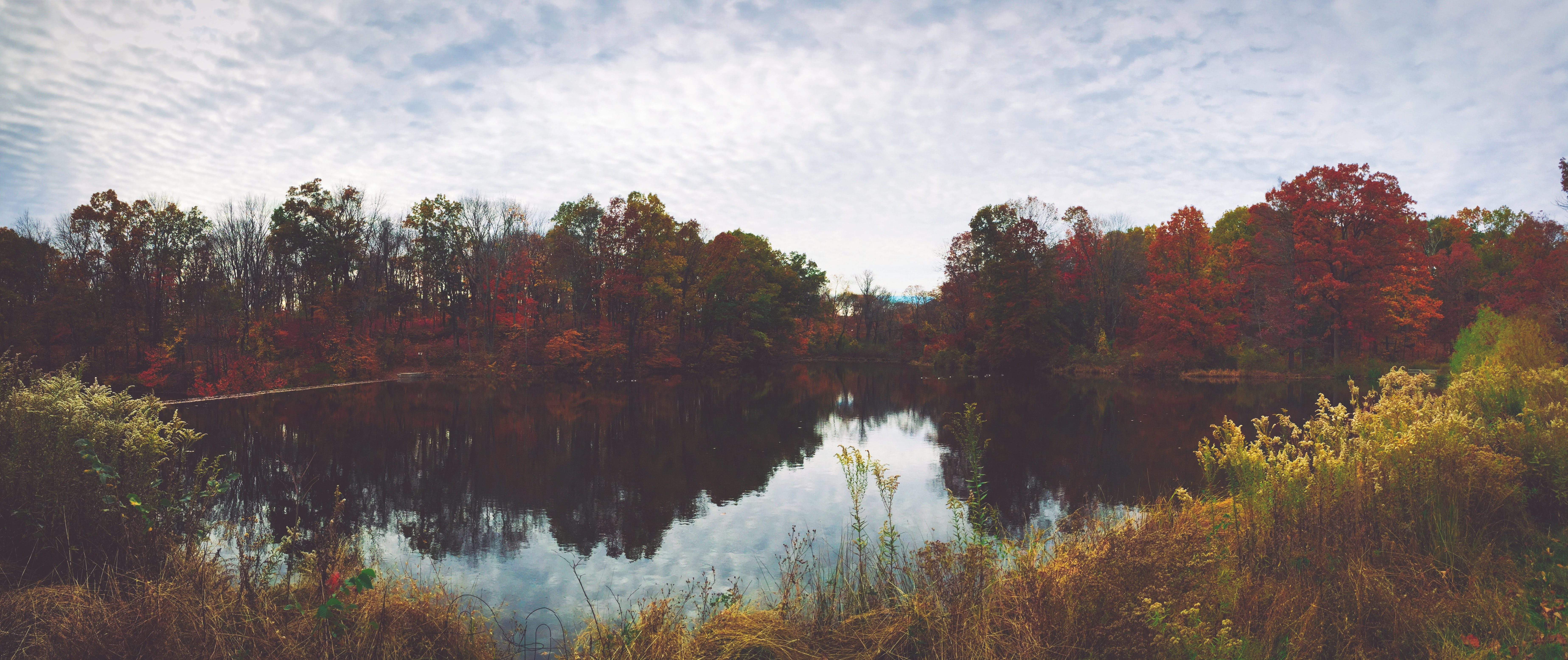 A picturesque panorama of a lake surrounded by yellow and red autumn vegetation