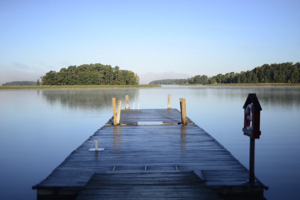 brown wooden dock and lake