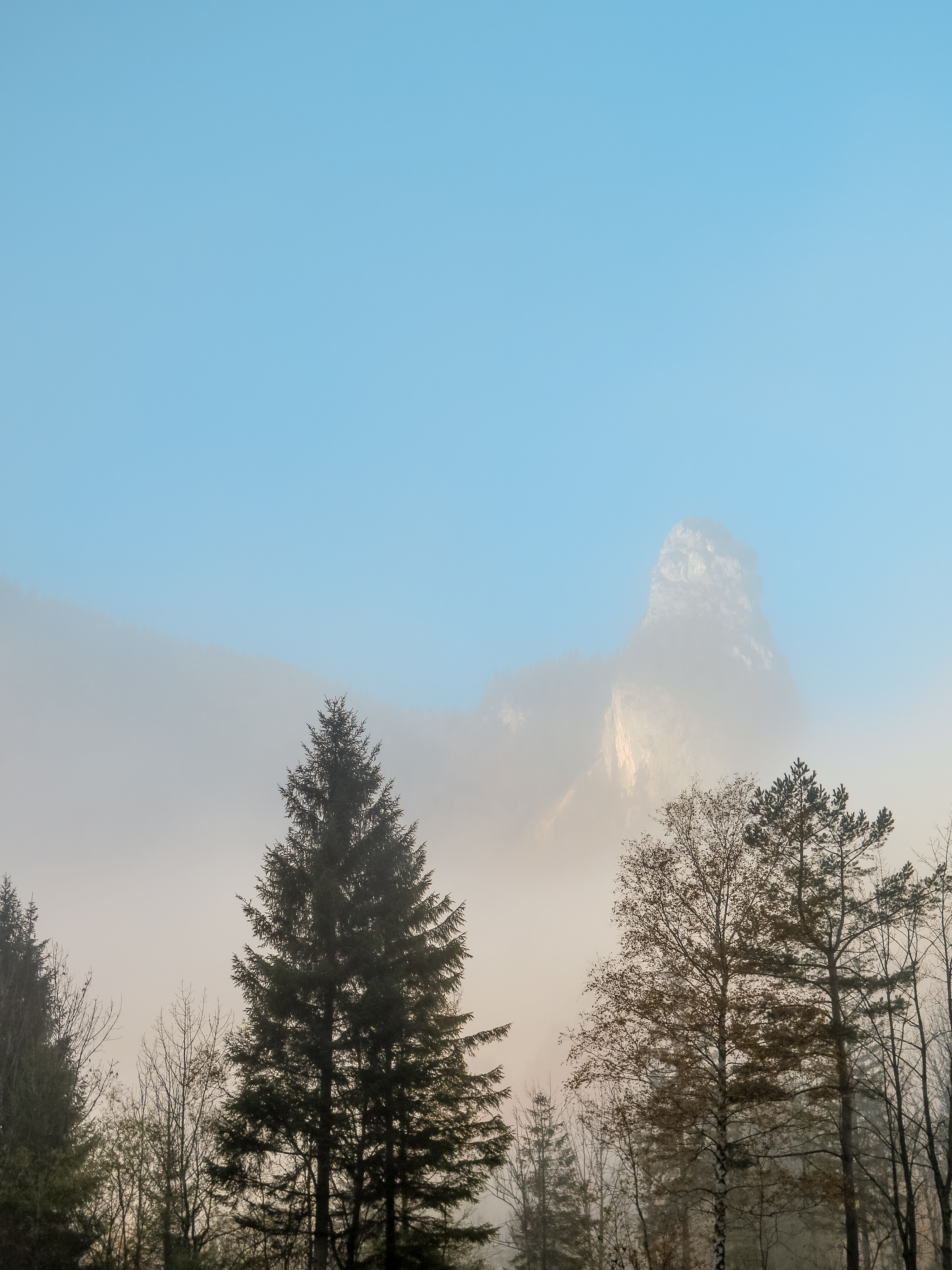 A tall mountain peak rising up above a mist-shrouded forest
