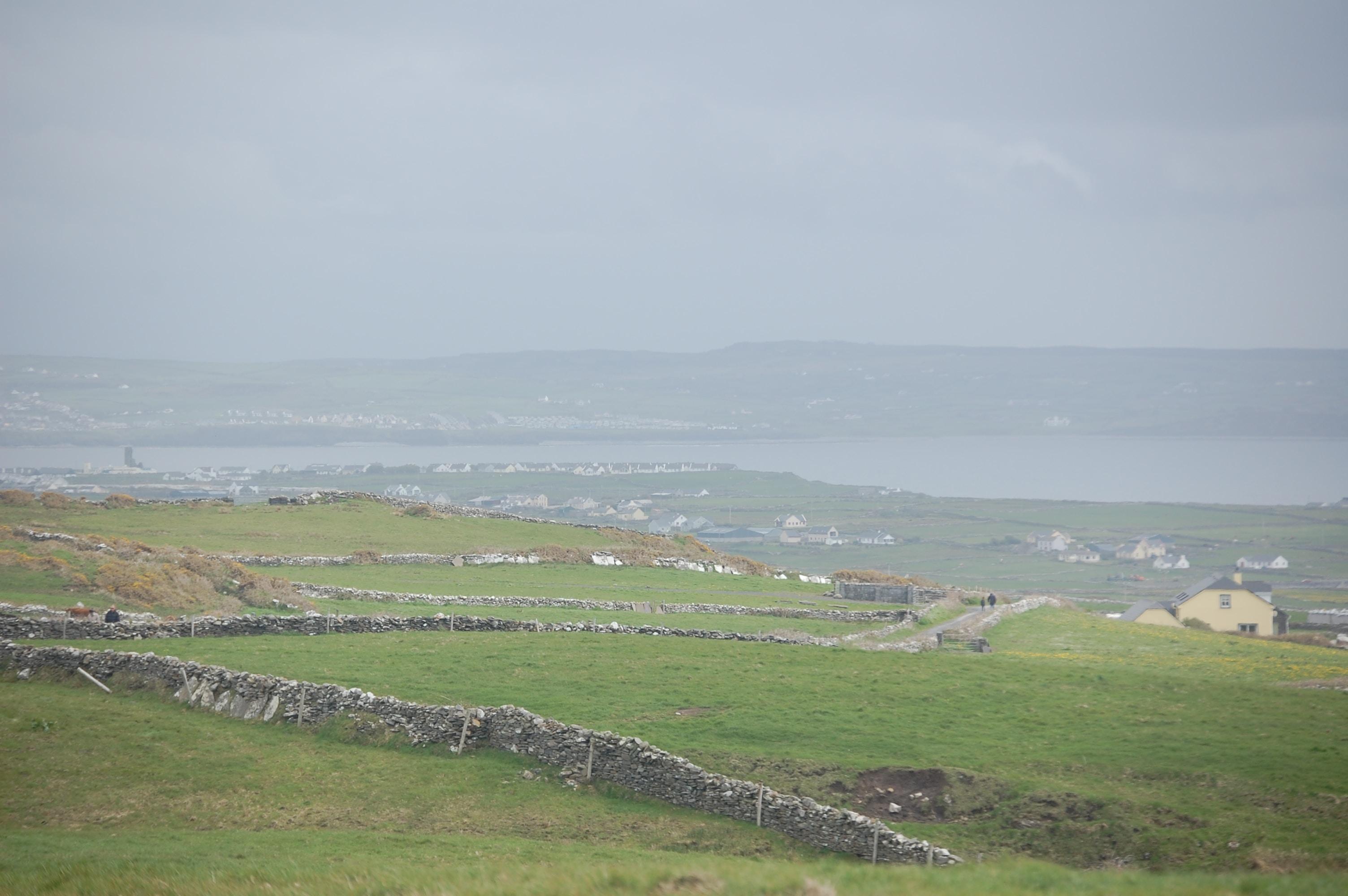 landscape photo of green grass field