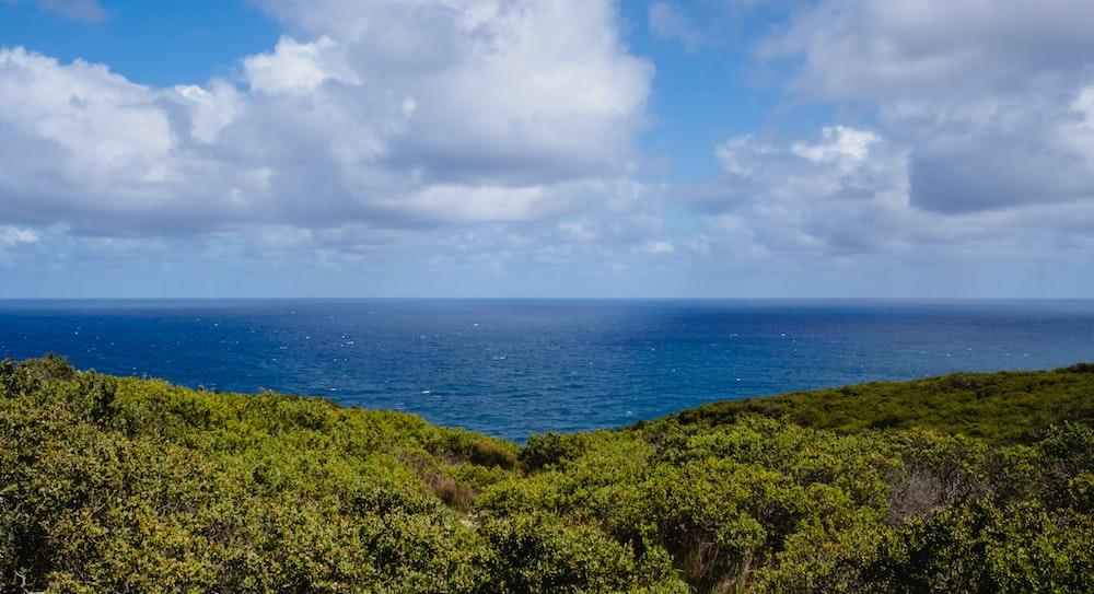 photography of blue ocean under sky